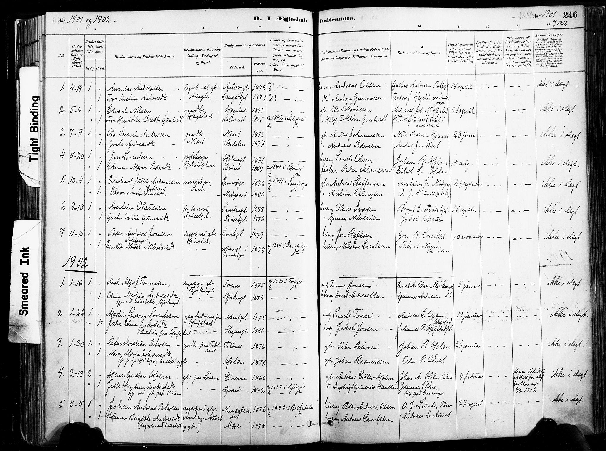 SAT, Ministerialprotokoller, klokkerbøker og fødselsregistre - Nord-Trøndelag, 735/L0351: Ministerialbok nr. 735A10, 1884-1908, s. 246