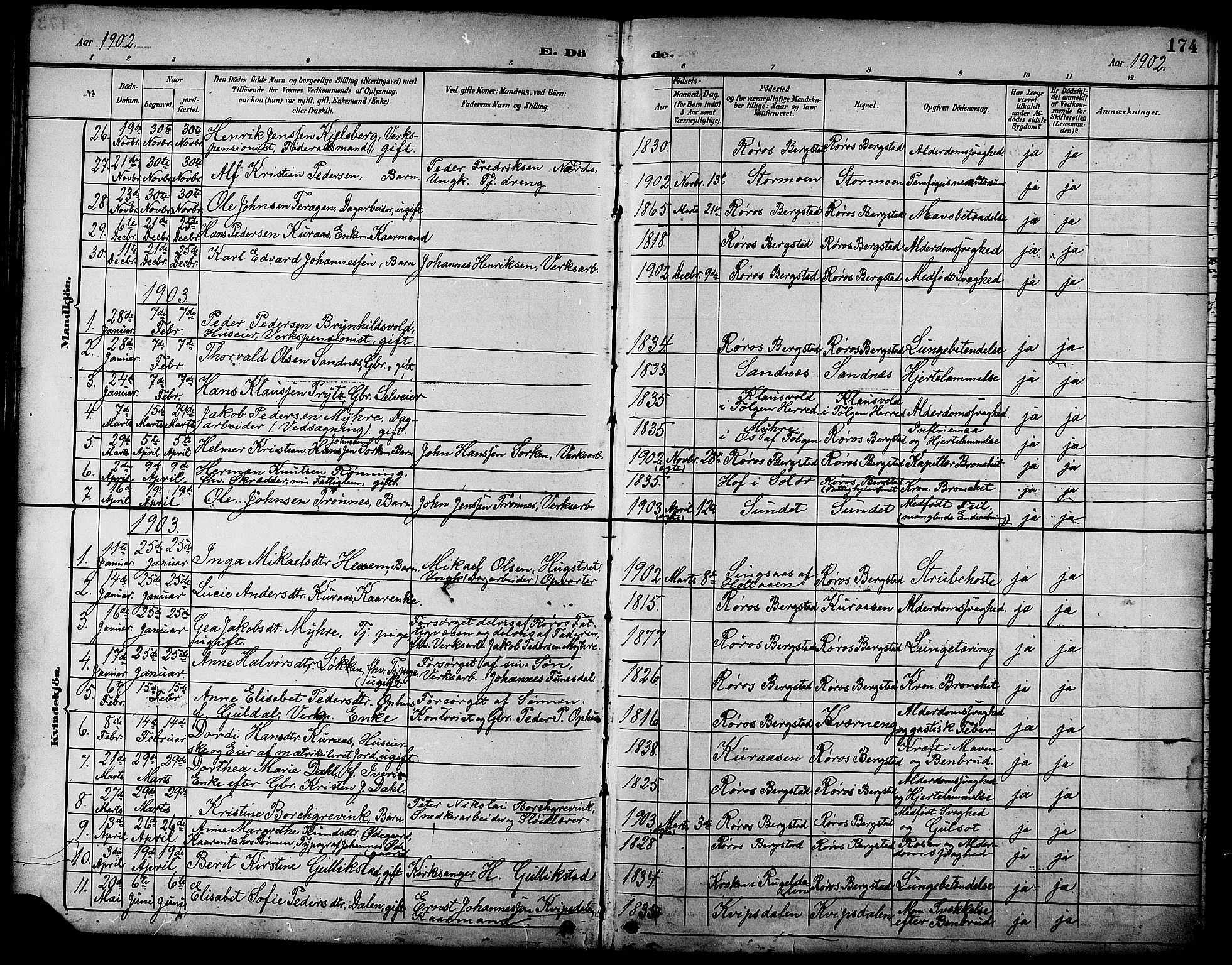 SAT, Ministerialprotokoller, klokkerbøker og fødselsregistre - Sør-Trøndelag, 681/L0941: Klokkerbok nr. 681C05, 1896-1905, s. 174