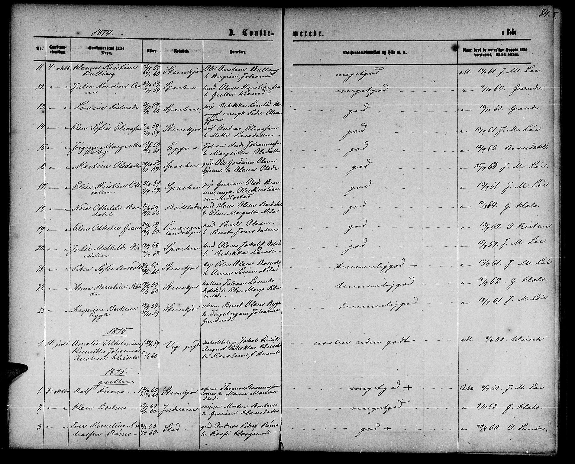 SAT, Ministerialprotokoller, klokkerbøker og fødselsregistre - Nord-Trøndelag, 739/L0373: Klokkerbok nr. 739C01, 1865-1882, s. 84