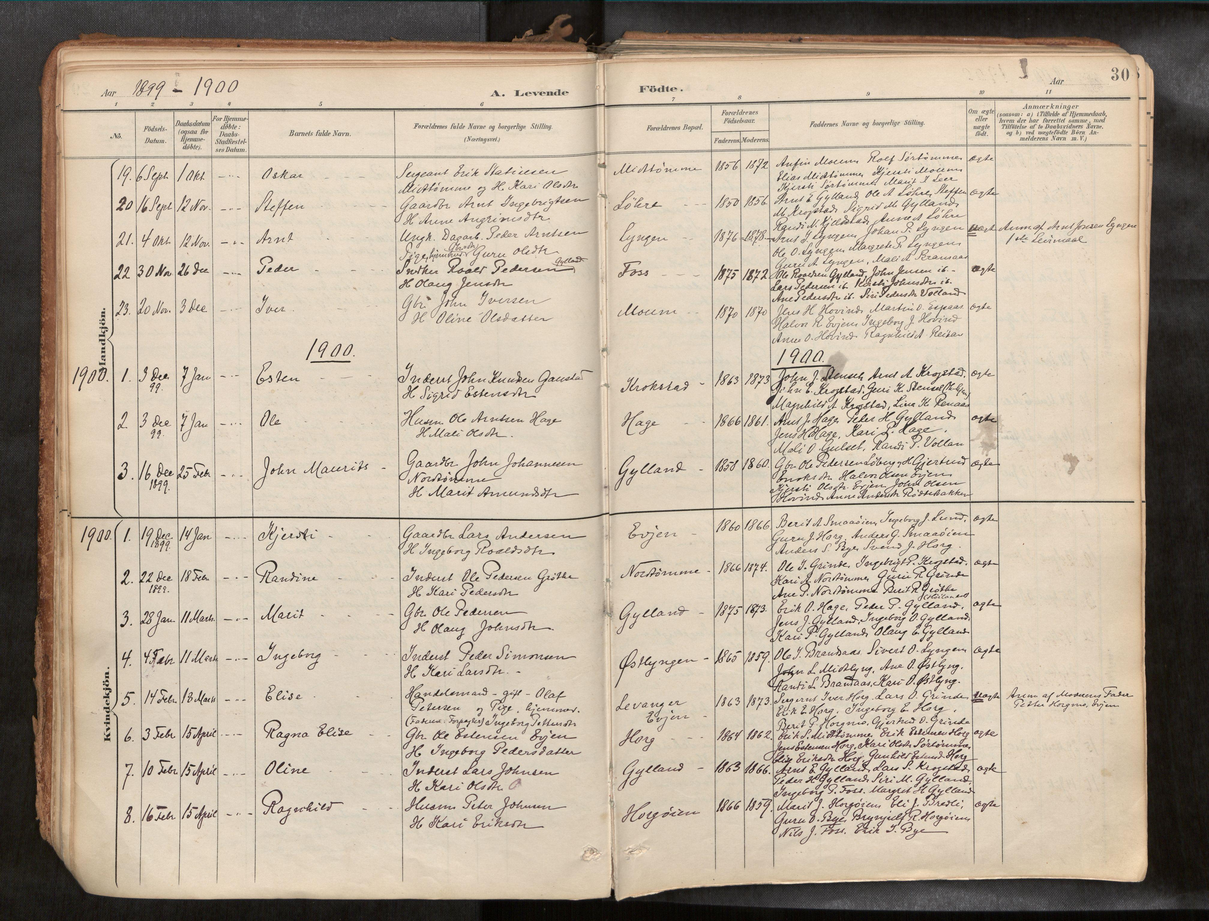 SAT, Ministerialprotokoller, klokkerbøker og fødselsregistre - Sør-Trøndelag, 692/L1105b: Ministerialbok nr. 692A06, 1891-1934, s. 30