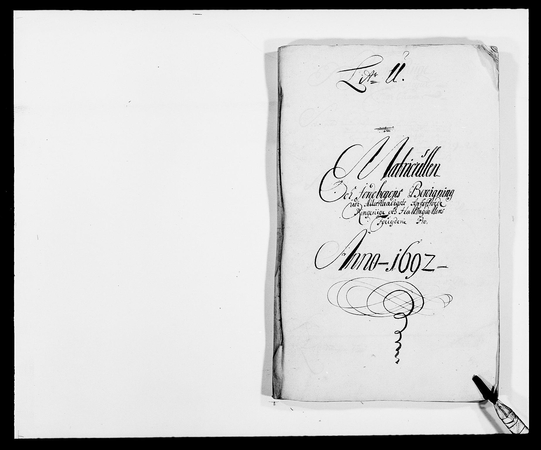 RA, Rentekammeret inntil 1814, Reviderte regnskaper, Fogderegnskap, R21/L1449: Fogderegnskap Ringerike og Hallingdal, 1690-1692, s. 12