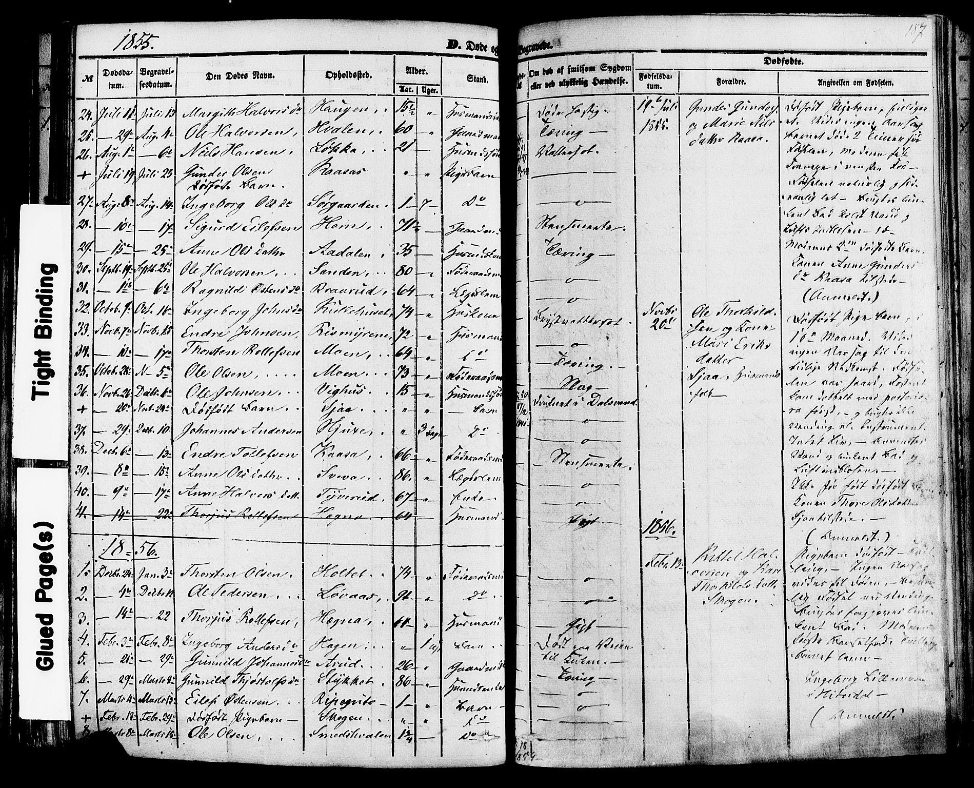 SAKO, Sauherad kirkebøker, F/Fa/L0007: Ministerialbok nr. I 7, 1851-1873, s. 187