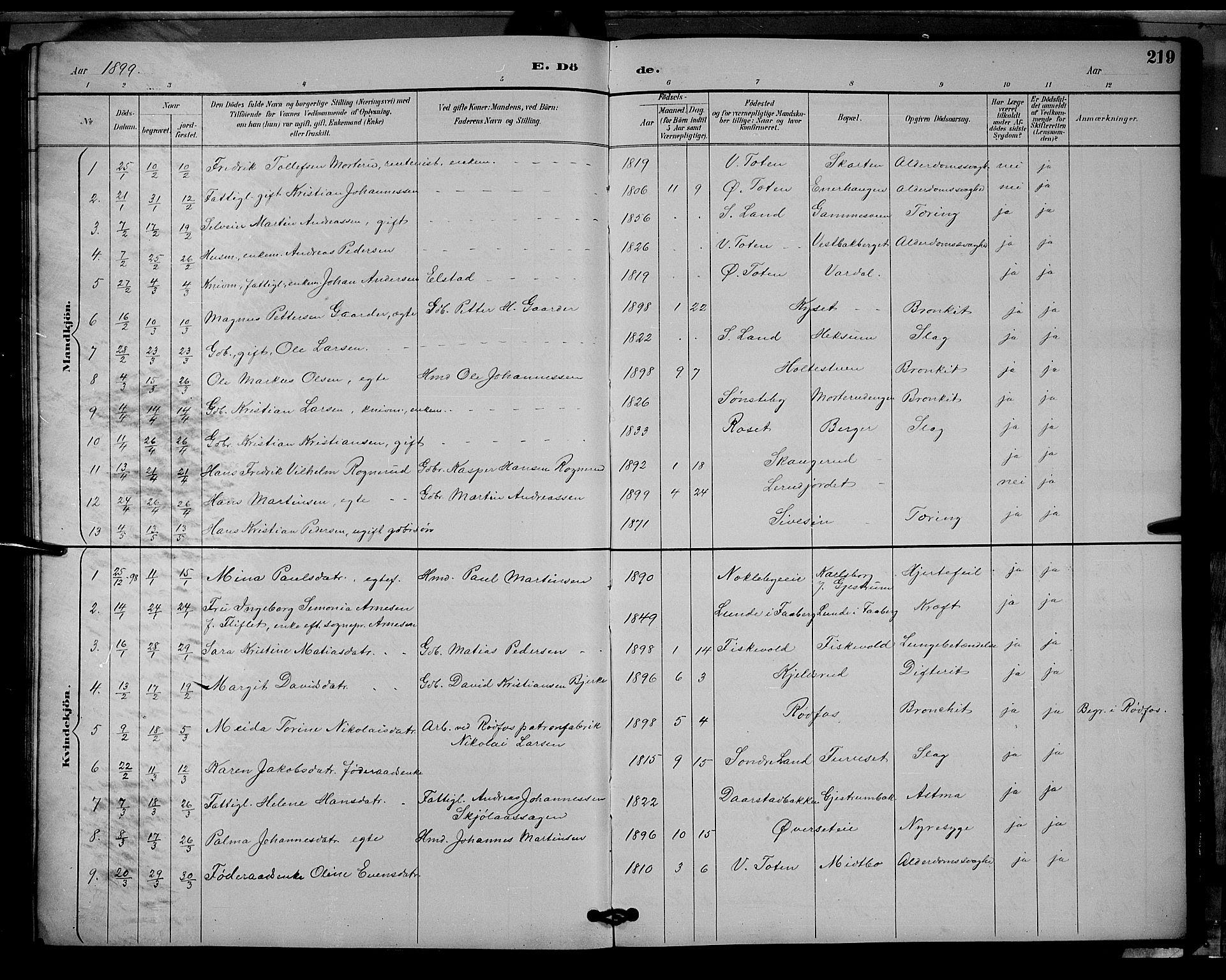 SAH, Vestre Toten prestekontor, Klokkerbok nr. 9, 1888-1900, s. 219