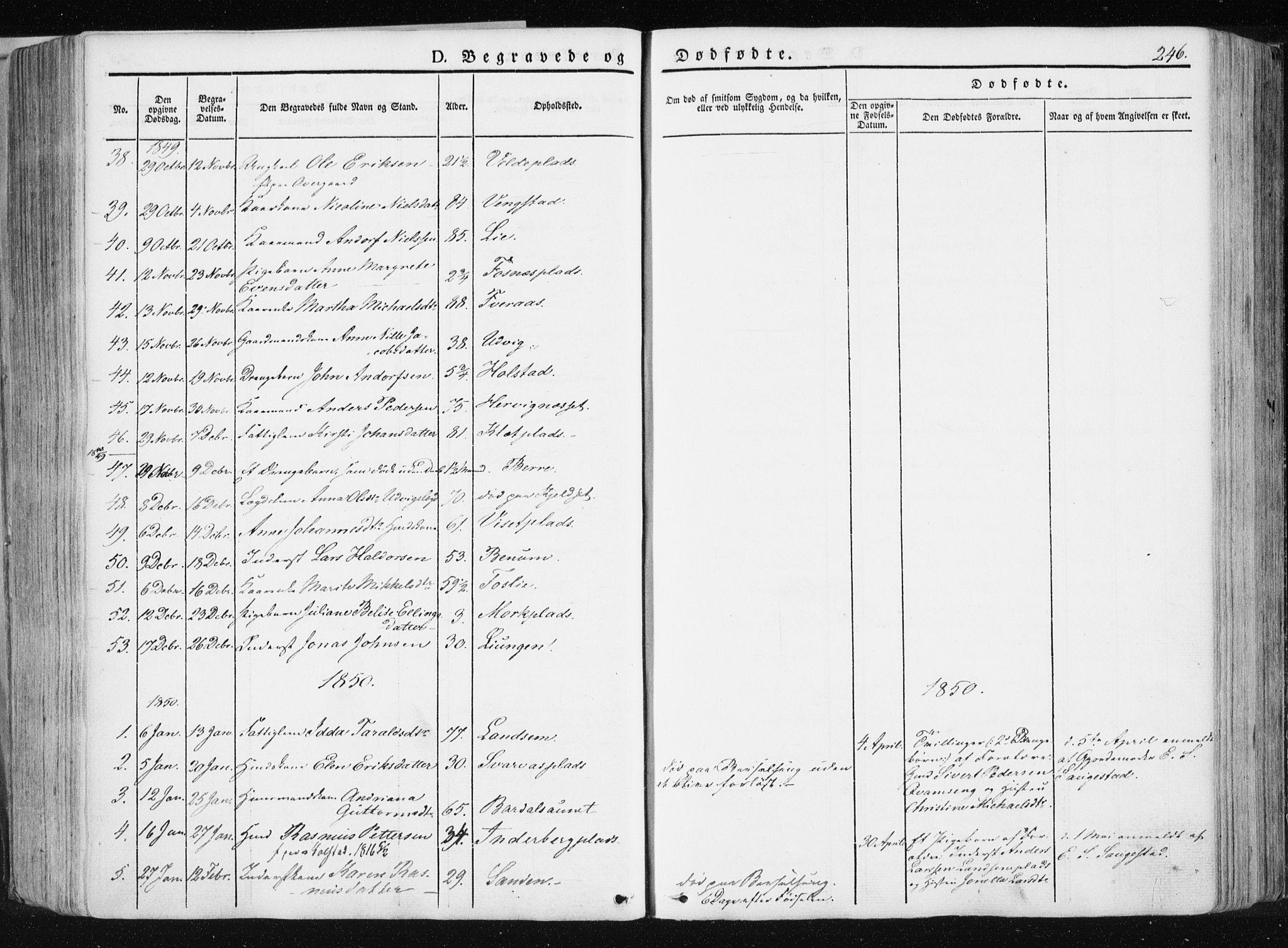 SAT, Ministerialprotokoller, klokkerbøker og fødselsregistre - Nord-Trøndelag, 741/L0393: Ministerialbok nr. 741A07, 1849-1863, s. 246
