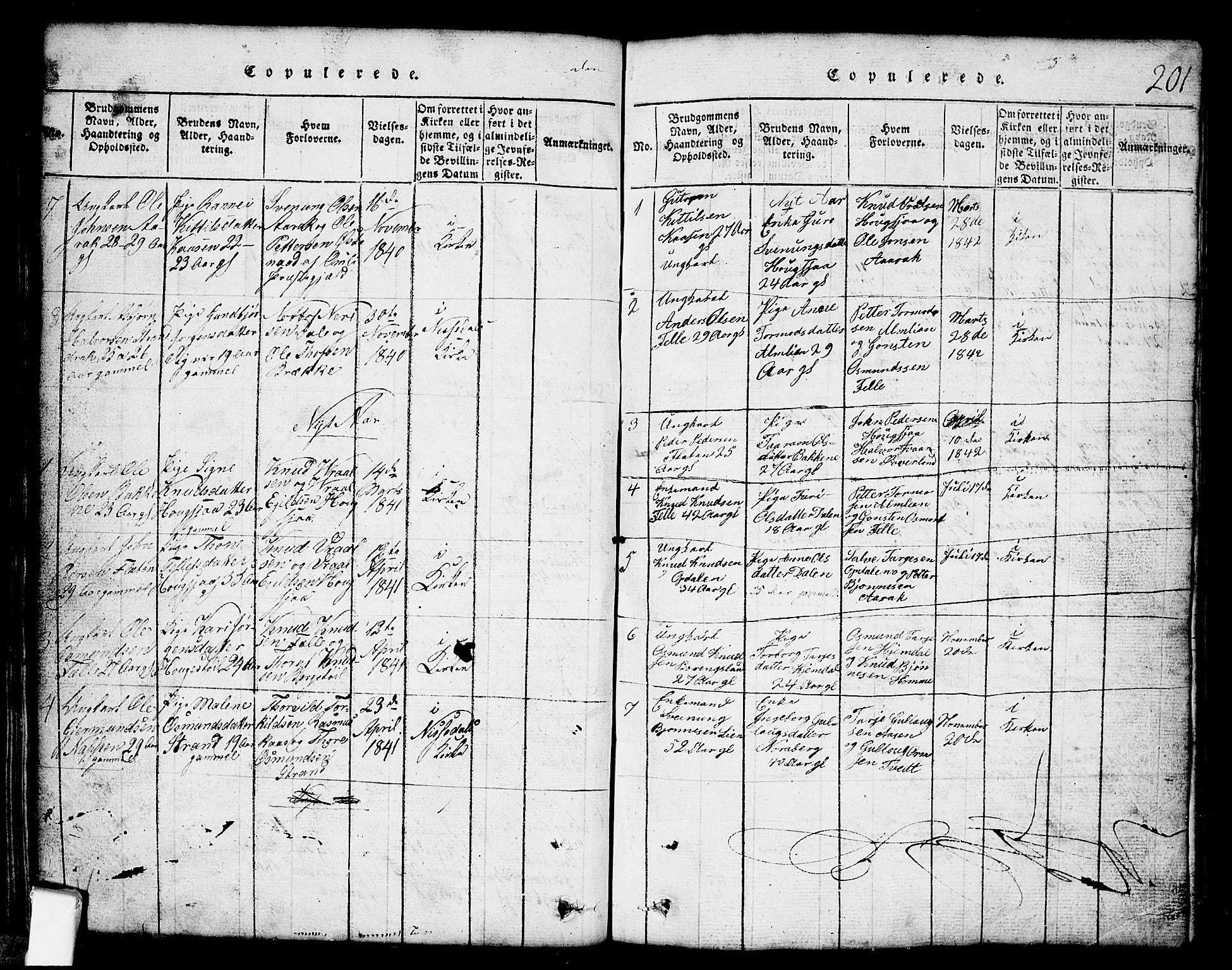 SAKO, Nissedal kirkebøker, G/Gb/L0001: Klokkerbok nr. II 1, 1814-1862, s. 201