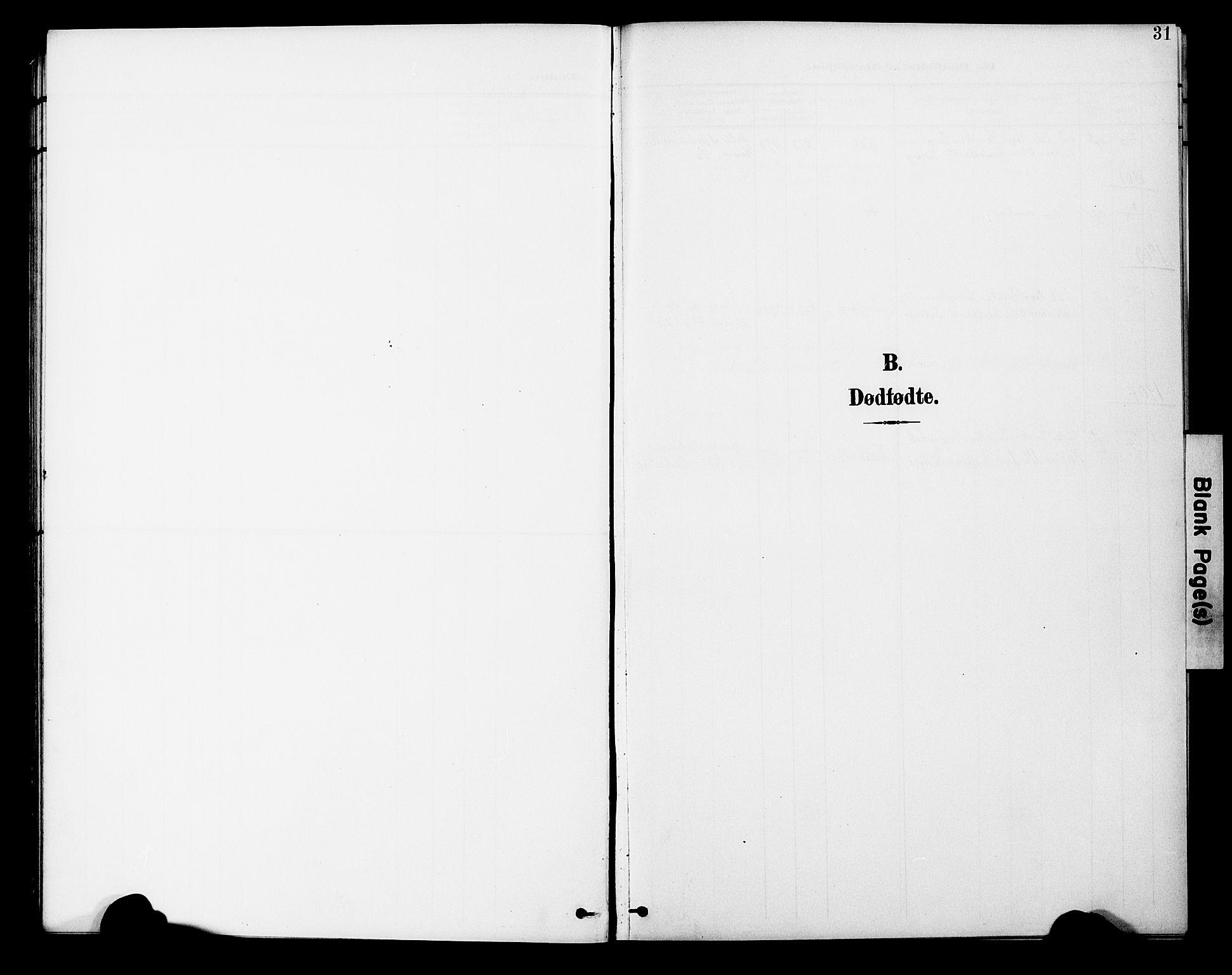 SAT, Ministerialprotokoller, klokkerbøker og fødselsregistre - Nord-Trøndelag, 746/L0452: Ministerialbok nr. 746A09, 1900-1908, s. 31