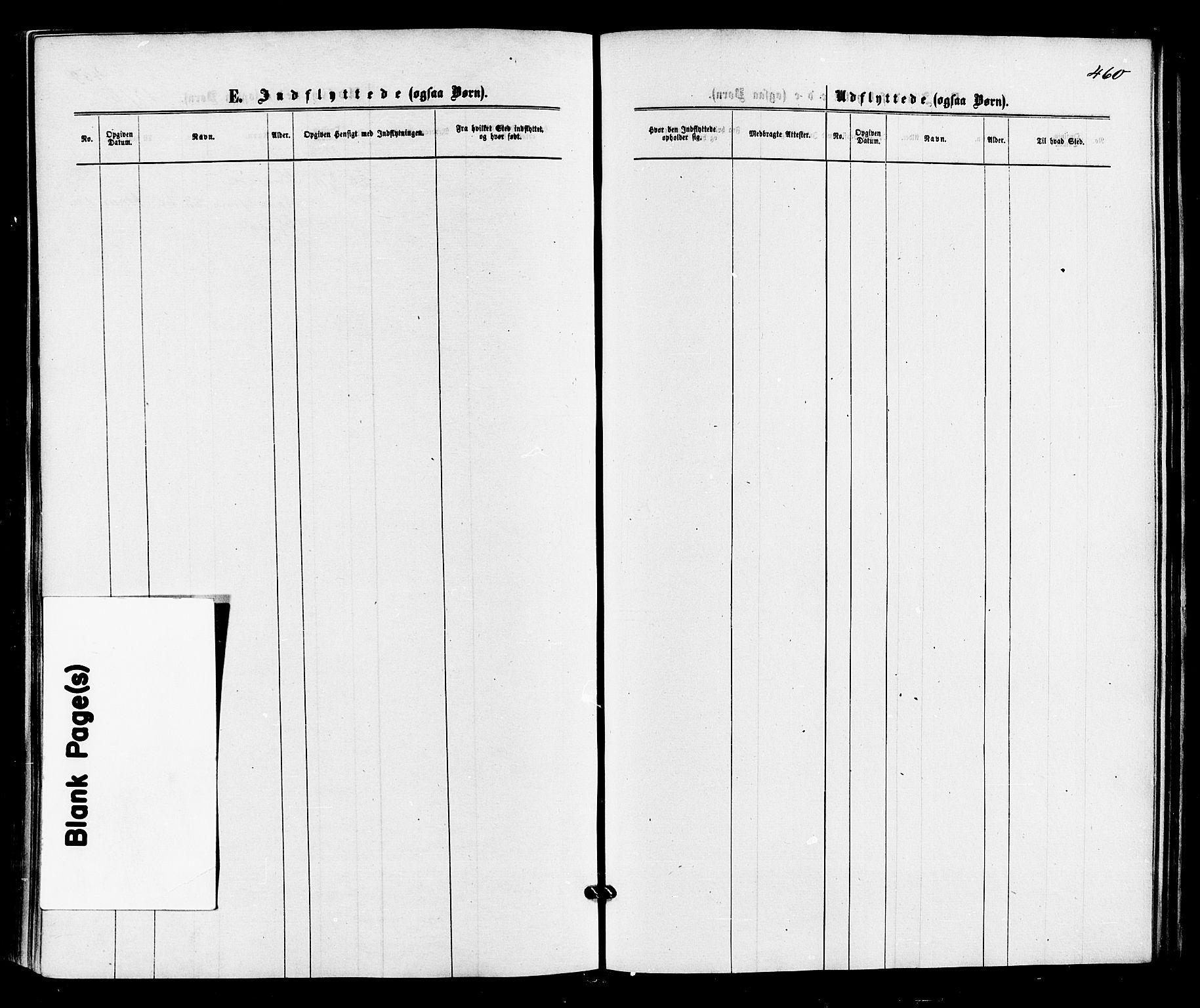 SAKO, Sigdal kirkebøker, F/Fa/L0010: Ministerialbok nr. I 10 /1, 1872-1878, s. 460