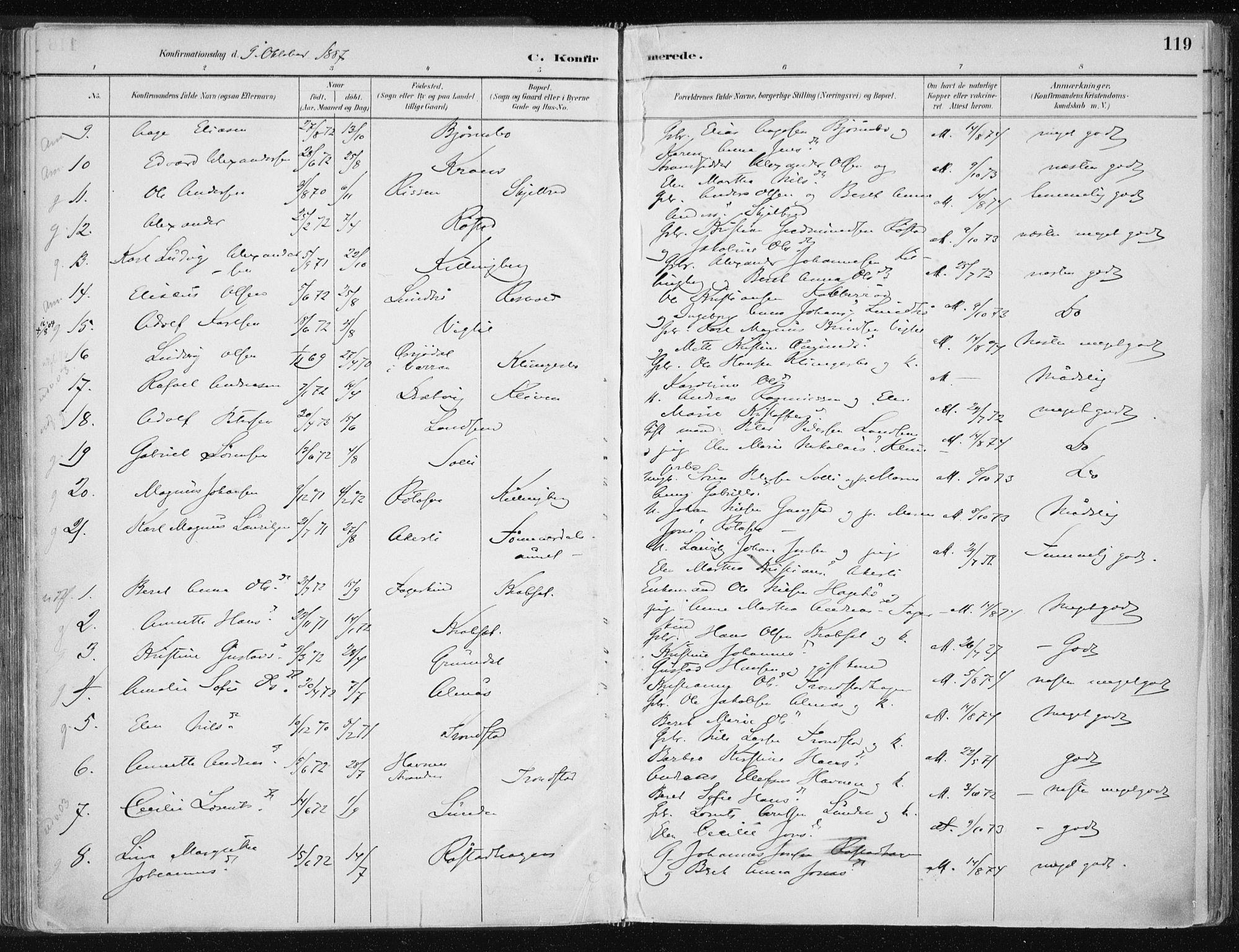 SAT, Ministerialprotokoller, klokkerbøker og fødselsregistre - Nord-Trøndelag, 701/L0010: Ministerialbok nr. 701A10, 1883-1899, s. 119