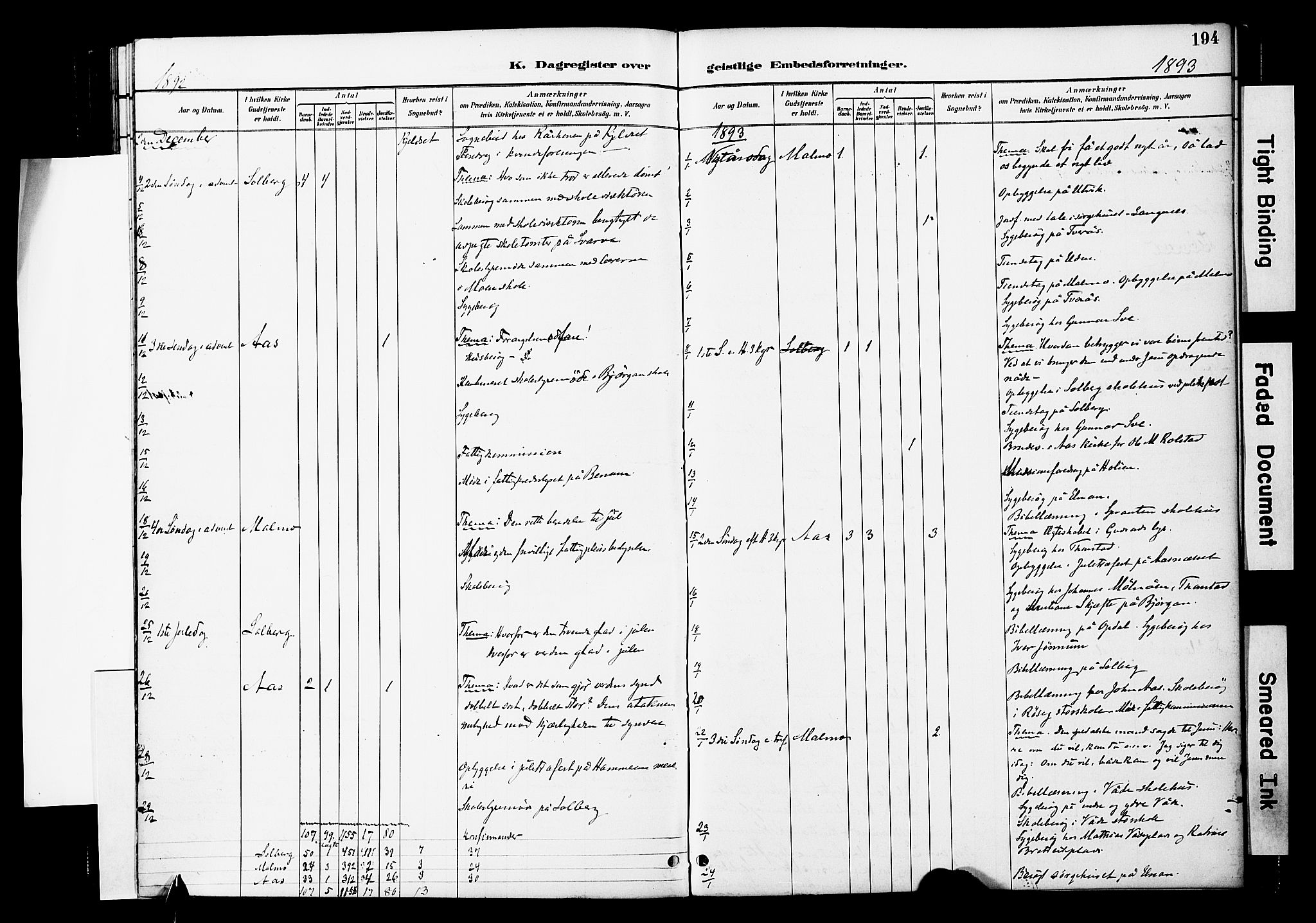 SAT, Ministerialprotokoller, klokkerbøker og fødselsregistre - Nord-Trøndelag, 741/L0396: Ministerialbok nr. 741A10, 1889-1901, s. 194