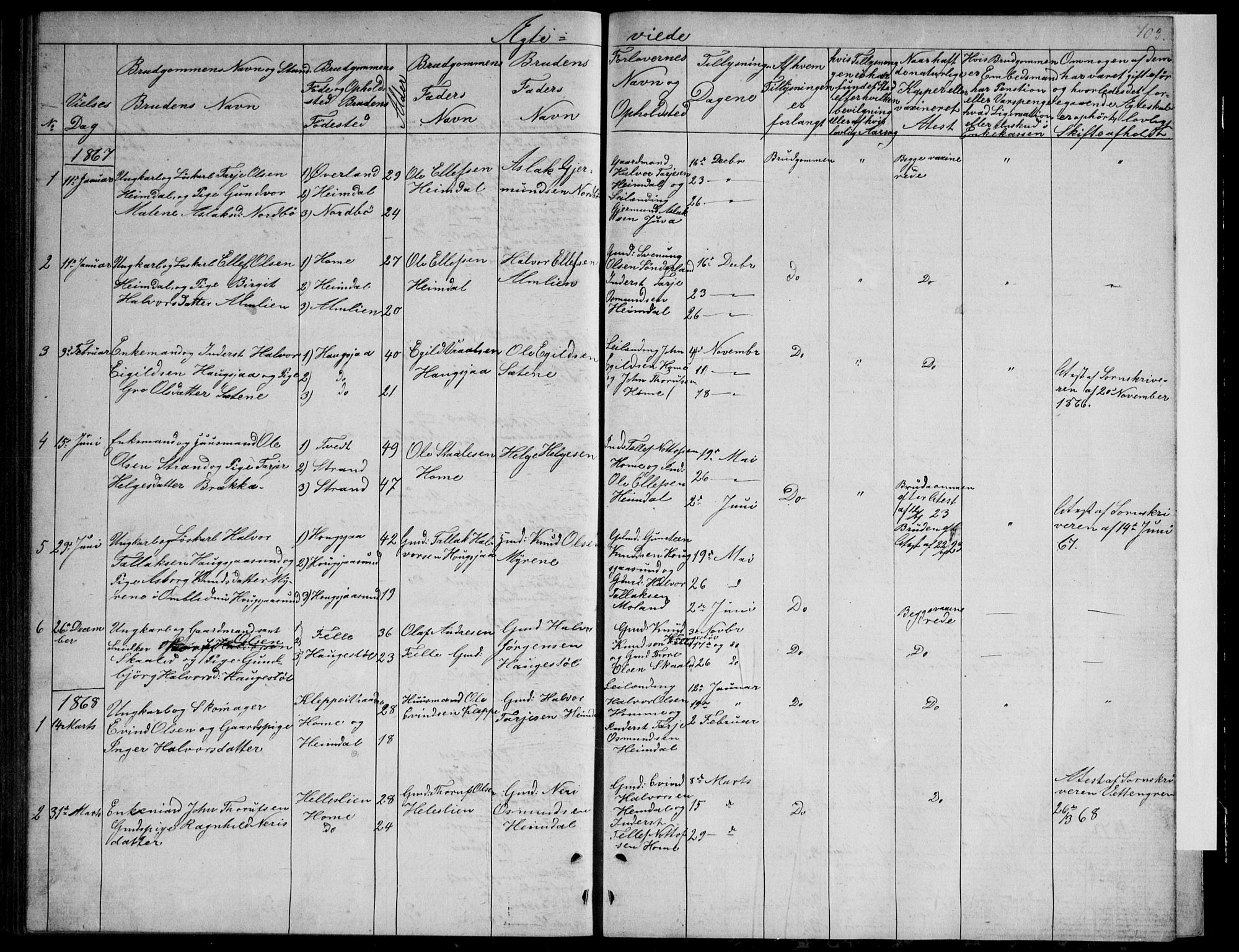 SAKO, Nissedal kirkebøker, G/Gb/L0002: Klokkerbok nr. II 2, 1863-1892, s. 103
