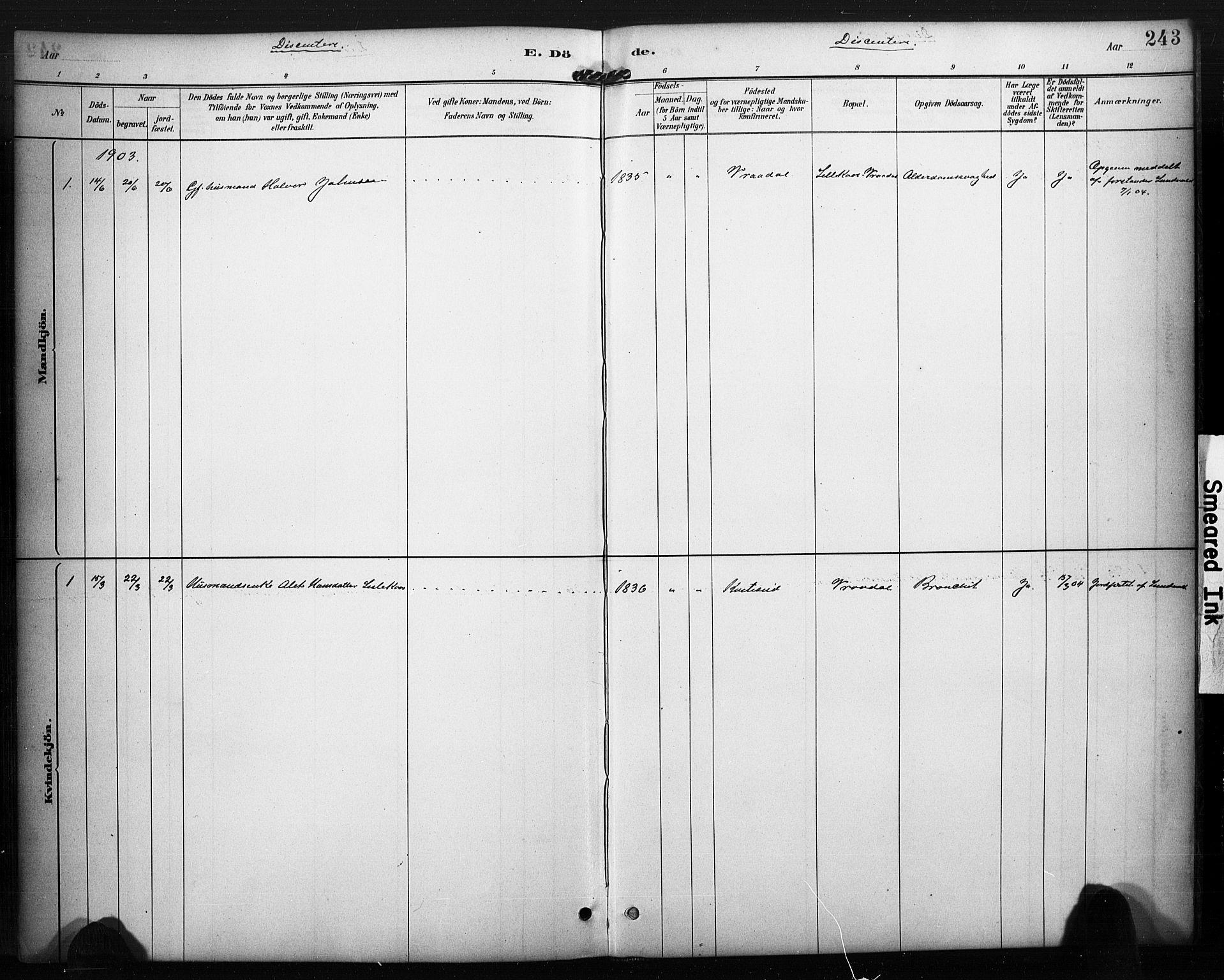 SAKO, Kviteseid kirkebøker, F/Fa/L0008: Ministerialbok nr. I 8, 1882-1903, s. 243