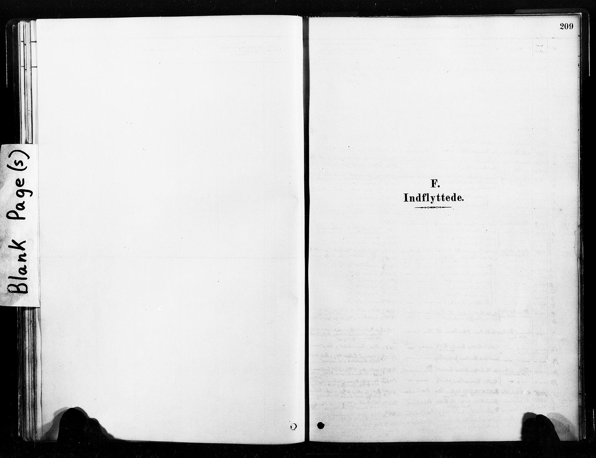 SAT, Ministerialprotokoller, klokkerbøker og fødselsregistre - Nord-Trøndelag, 789/L0705: Ministerialbok nr. 789A01, 1878-1910, s. 209