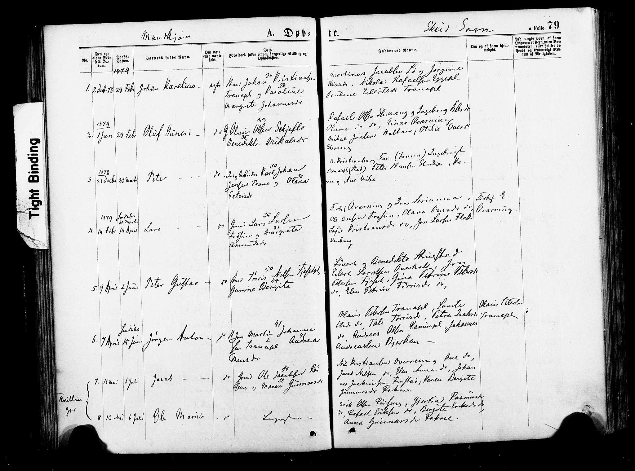 SAT, Ministerialprotokoller, klokkerbøker og fødselsregistre - Nord-Trøndelag, 735/L0348: Ministerialbok nr. 735A09 /2, 1873-1883, s. 79