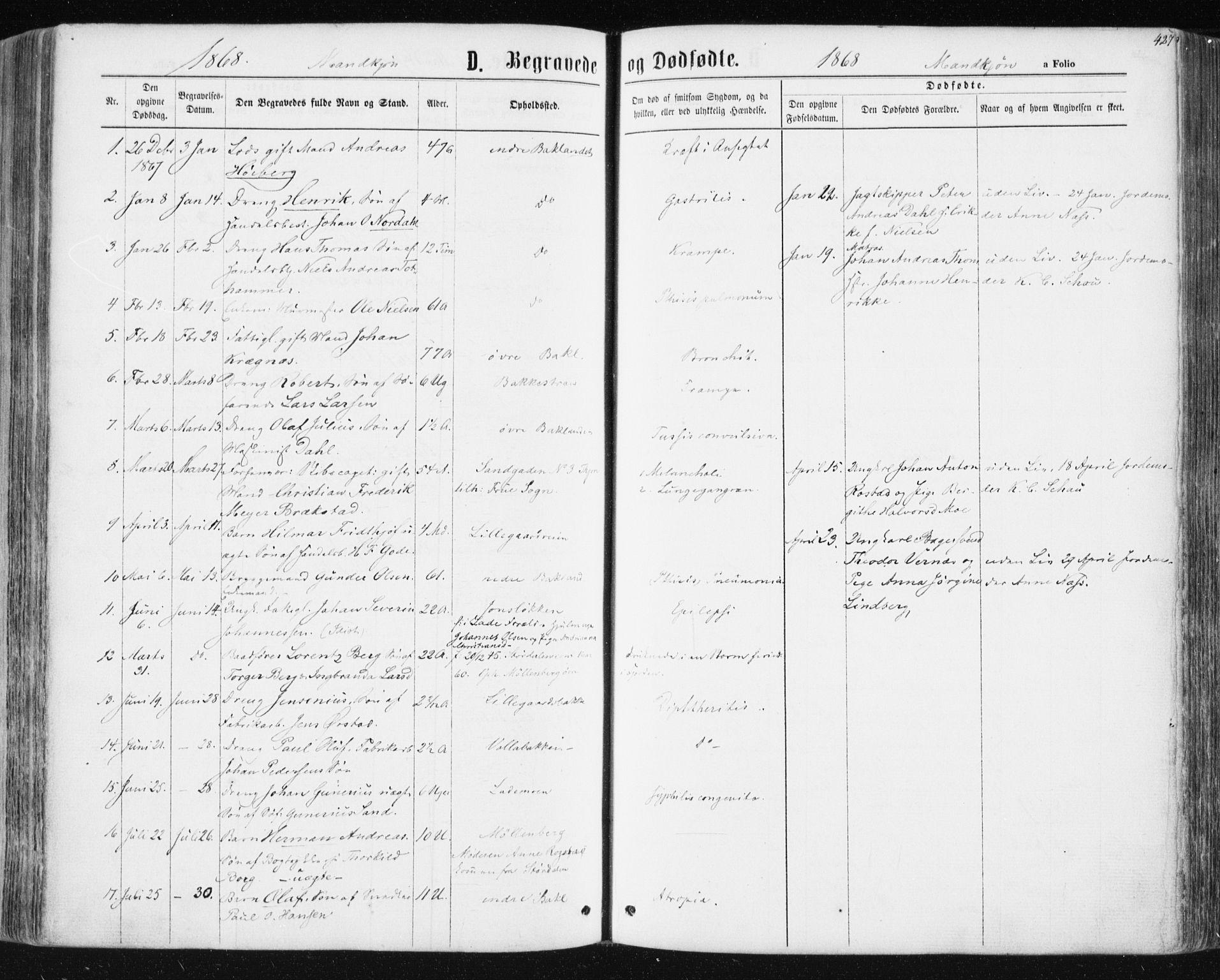 SAT, Ministerialprotokoller, klokkerbøker og fødselsregistre - Sør-Trøndelag, 604/L0186: Ministerialbok nr. 604A07, 1866-1877, s. 427