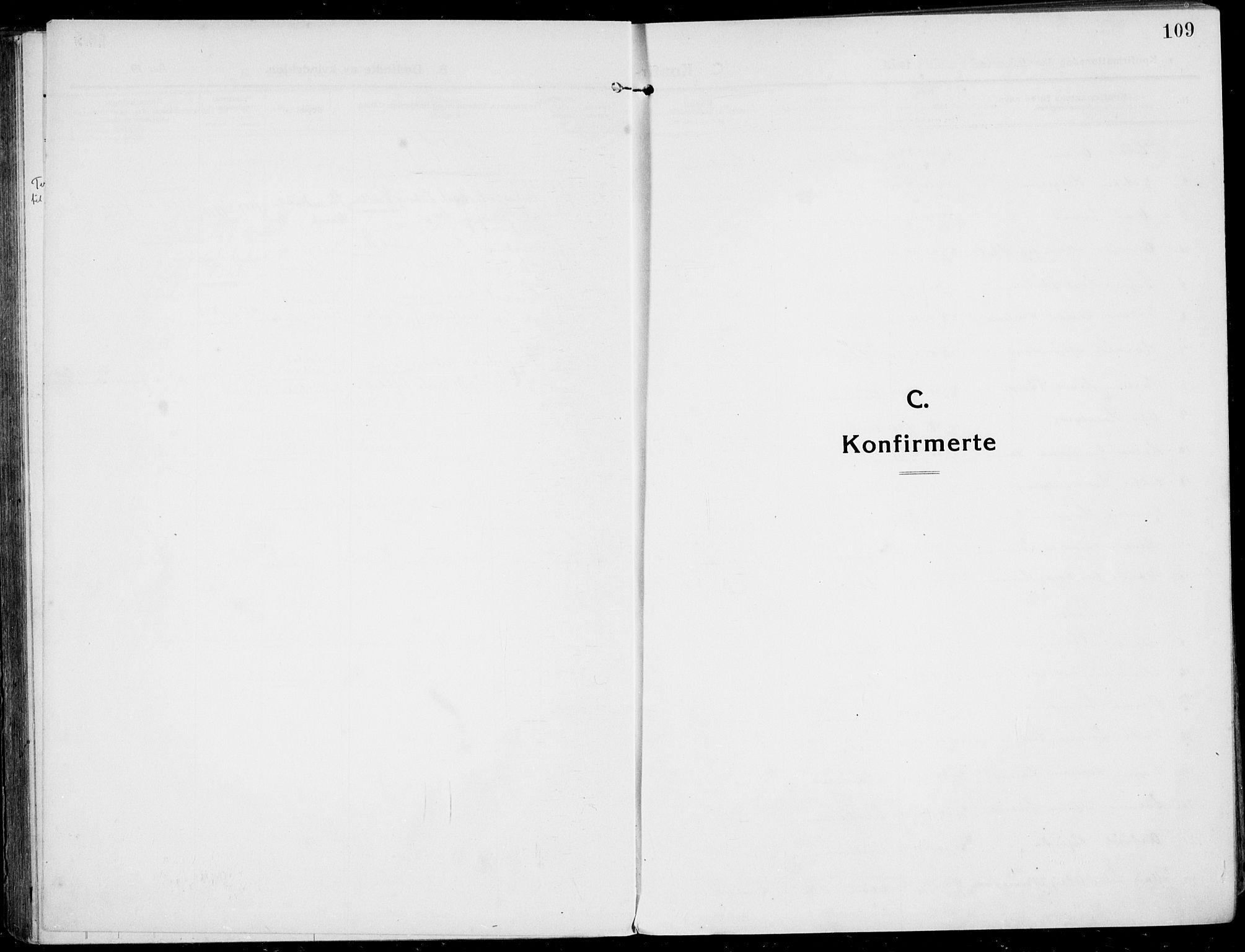 SAKO, Rjukan kirkebøker, F/Fa/L0002: Ministerialbok nr. 2, 1912-1917, s. 109