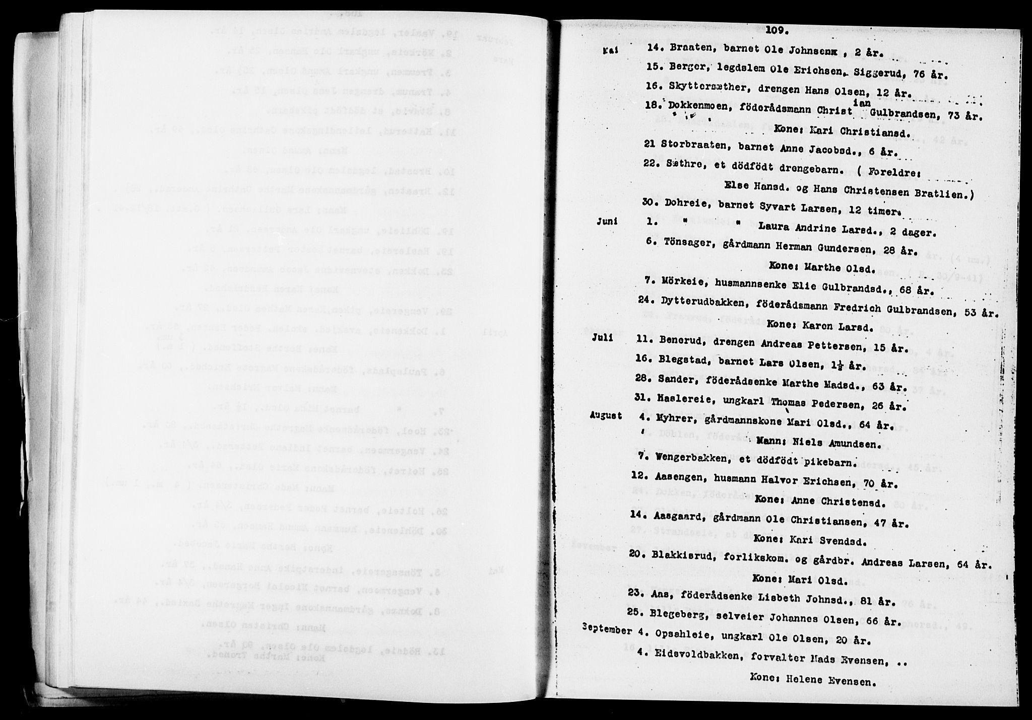 SAO, Eidsvoll prestekontor Kirkebøker, O/Oa/L0005: Annen kirkebok nr. 5, 1815-1865, s. 109