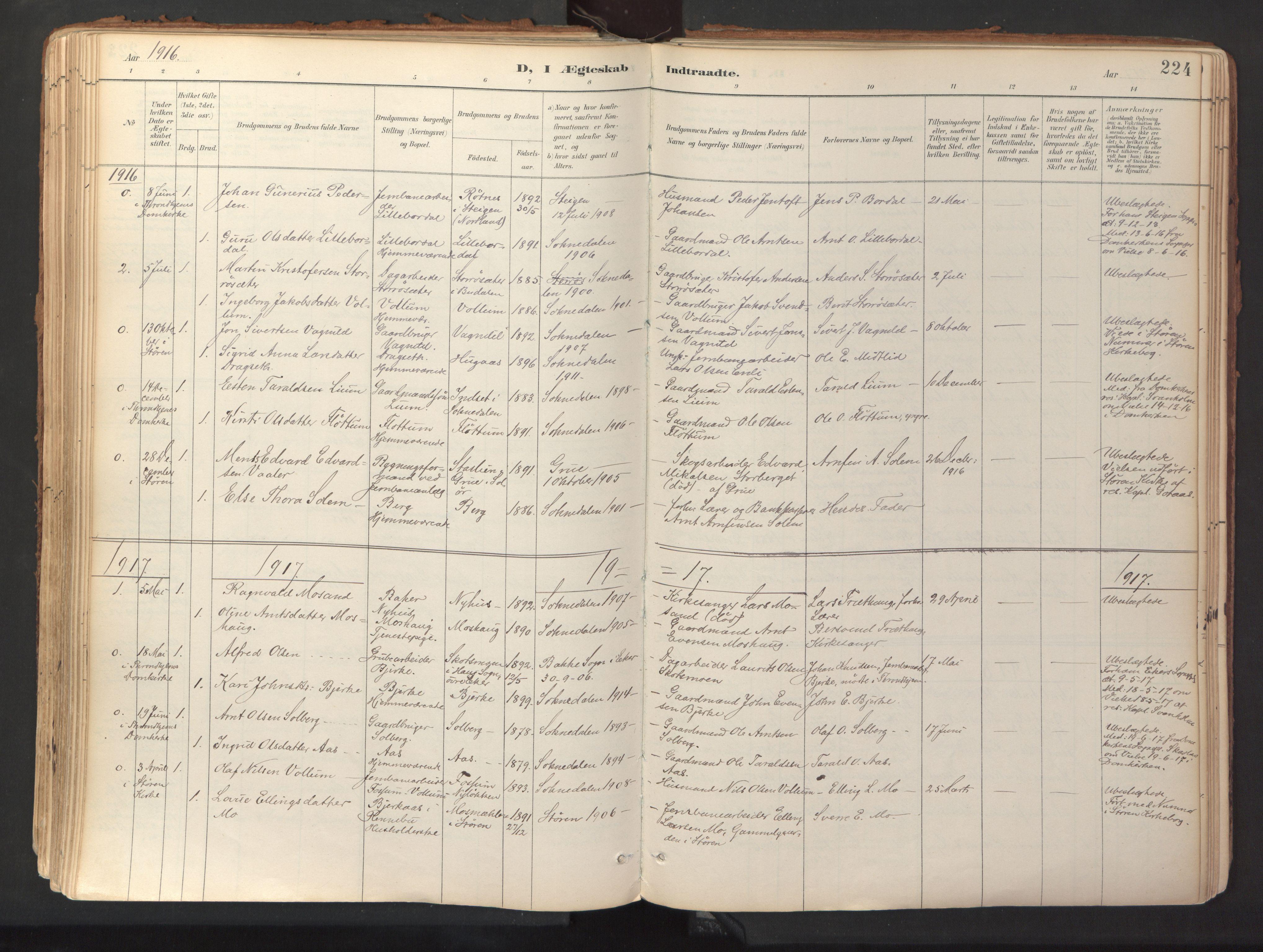 SAT, Ministerialprotokoller, klokkerbøker og fødselsregistre - Sør-Trøndelag, 689/L1041: Ministerialbok nr. 689A06, 1891-1923, s. 224