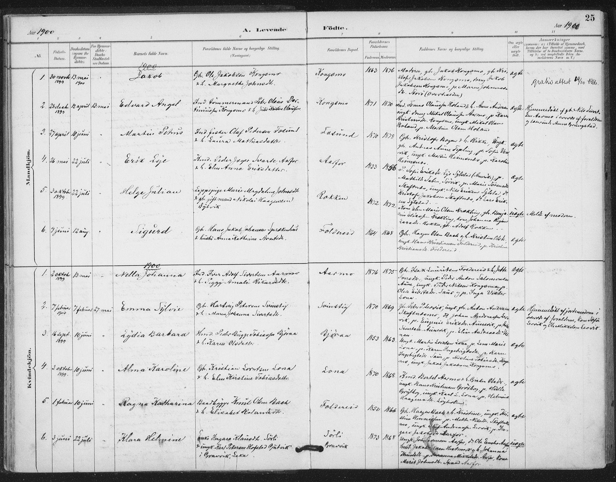 SAT, Ministerialprotokoller, klokkerbøker og fødselsregistre - Nord-Trøndelag, 783/L0660: Ministerialbok nr. 783A02, 1886-1918, s. 25