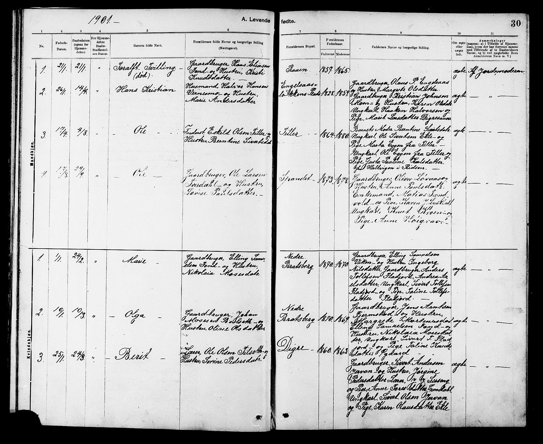 SAT, Ministerialprotokoller, klokkerbøker og fødselsregistre - Sør-Trøndelag, 608/L0341: Klokkerbok nr. 608C07, 1890-1912, s. 30