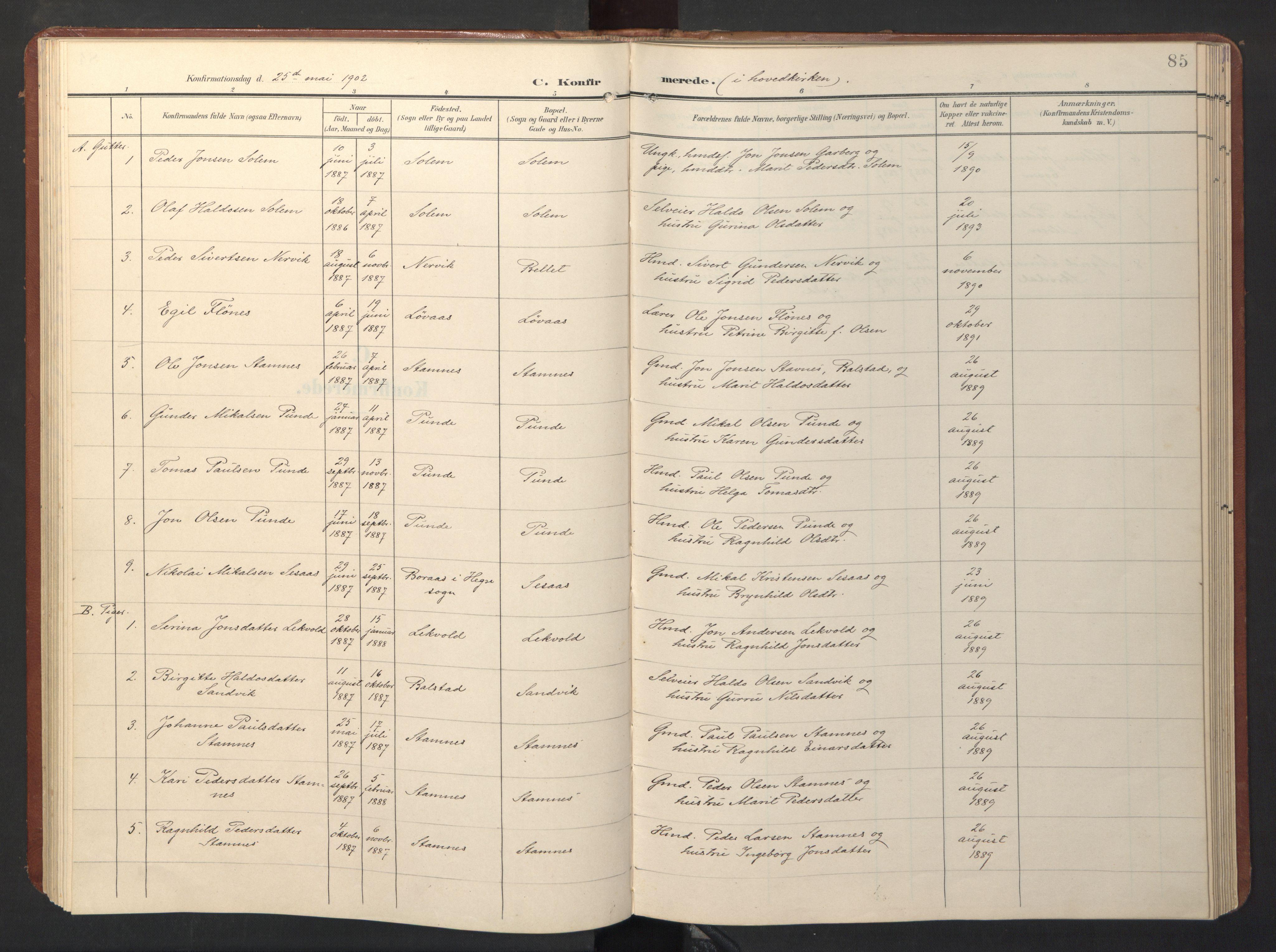 SAT, Ministerialprotokoller, klokkerbøker og fødselsregistre - Sør-Trøndelag, 696/L1161: Klokkerbok nr. 696C01, 1902-1950, s. 85