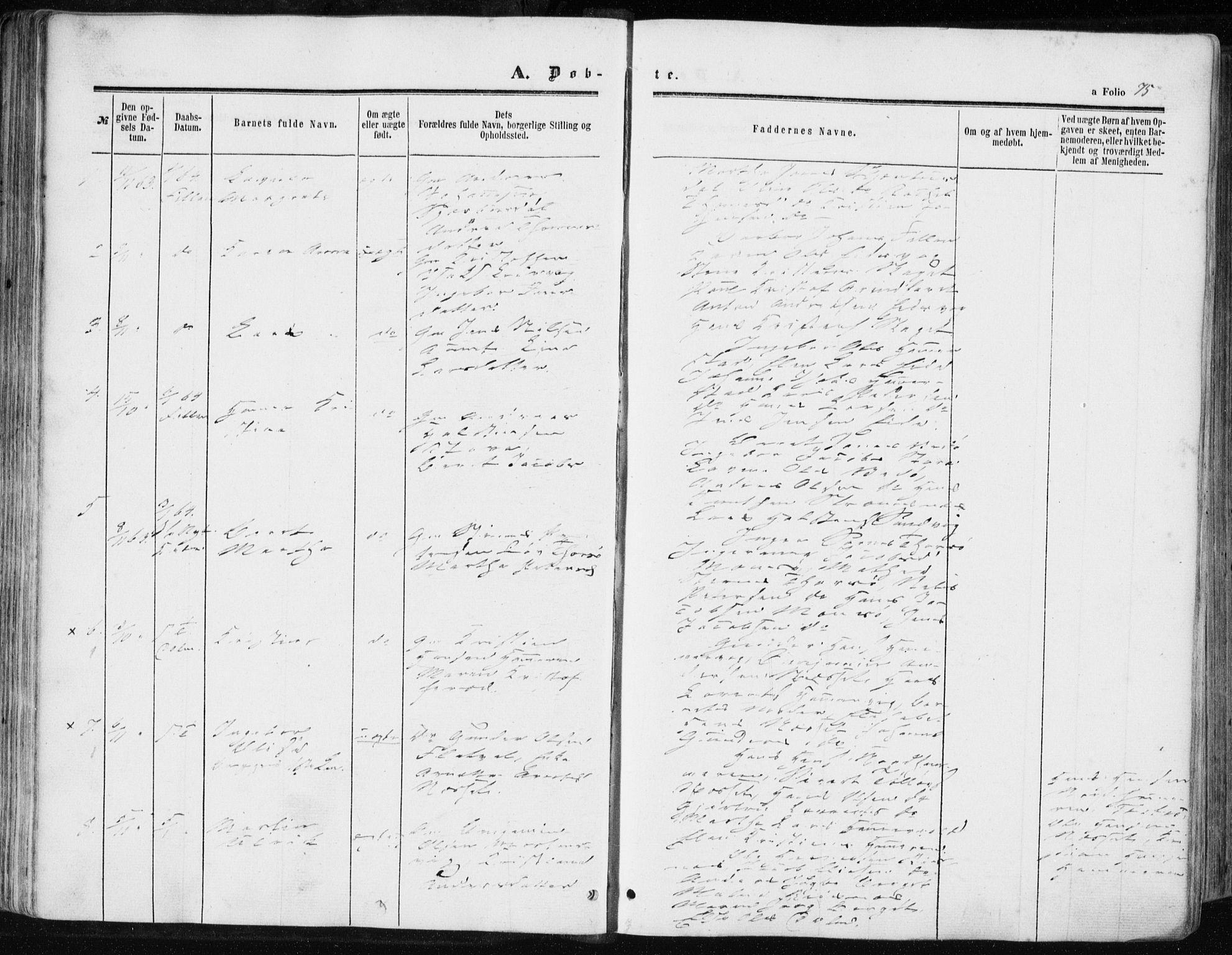 SAT, Ministerialprotokoller, klokkerbøker og fødselsregistre - Sør-Trøndelag, 634/L0531: Ministerialbok nr. 634A07, 1861-1870, s. 75