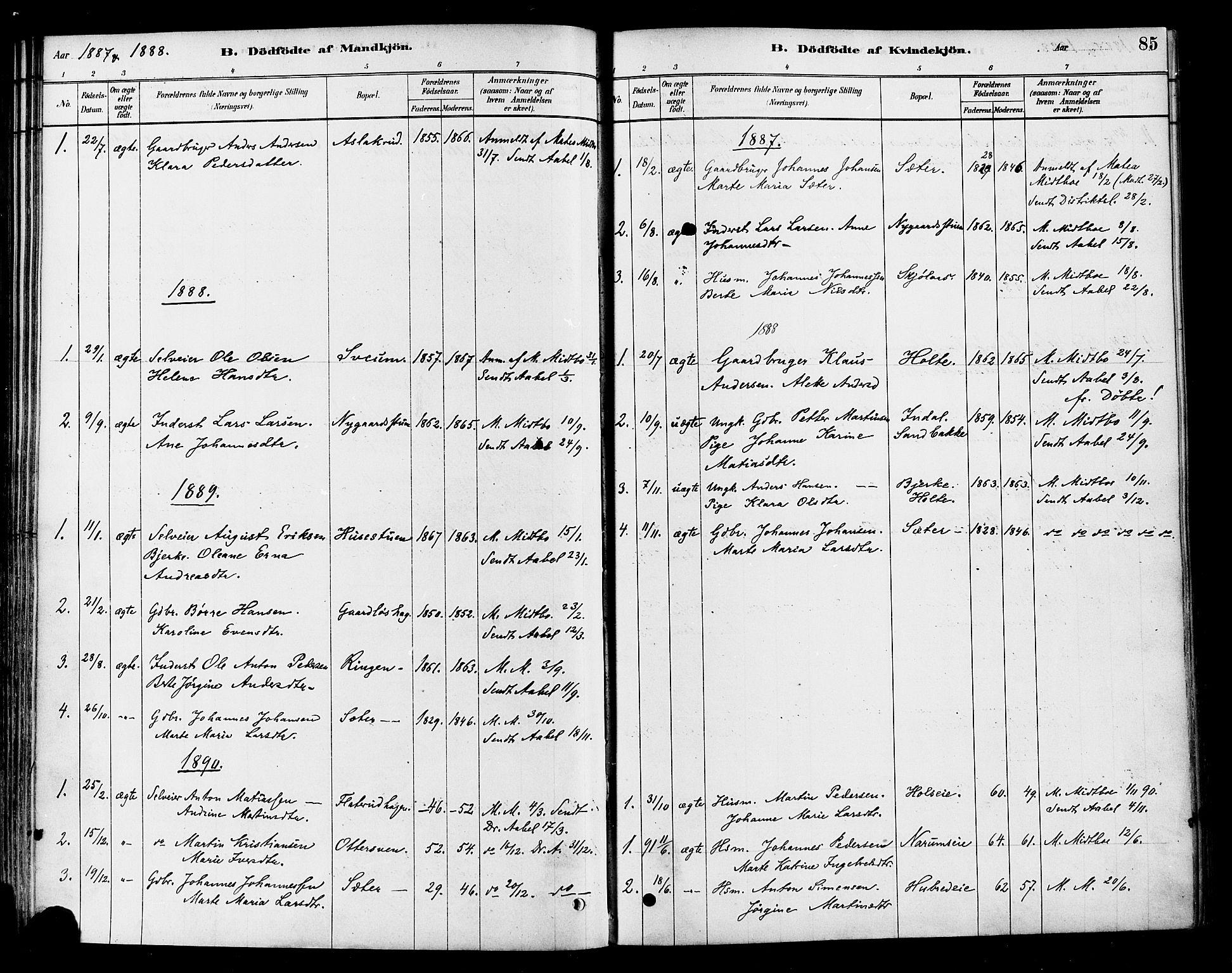 SAH, Vestre Toten prestekontor, Ministerialbok nr. 10, 1878-1894, s. 85