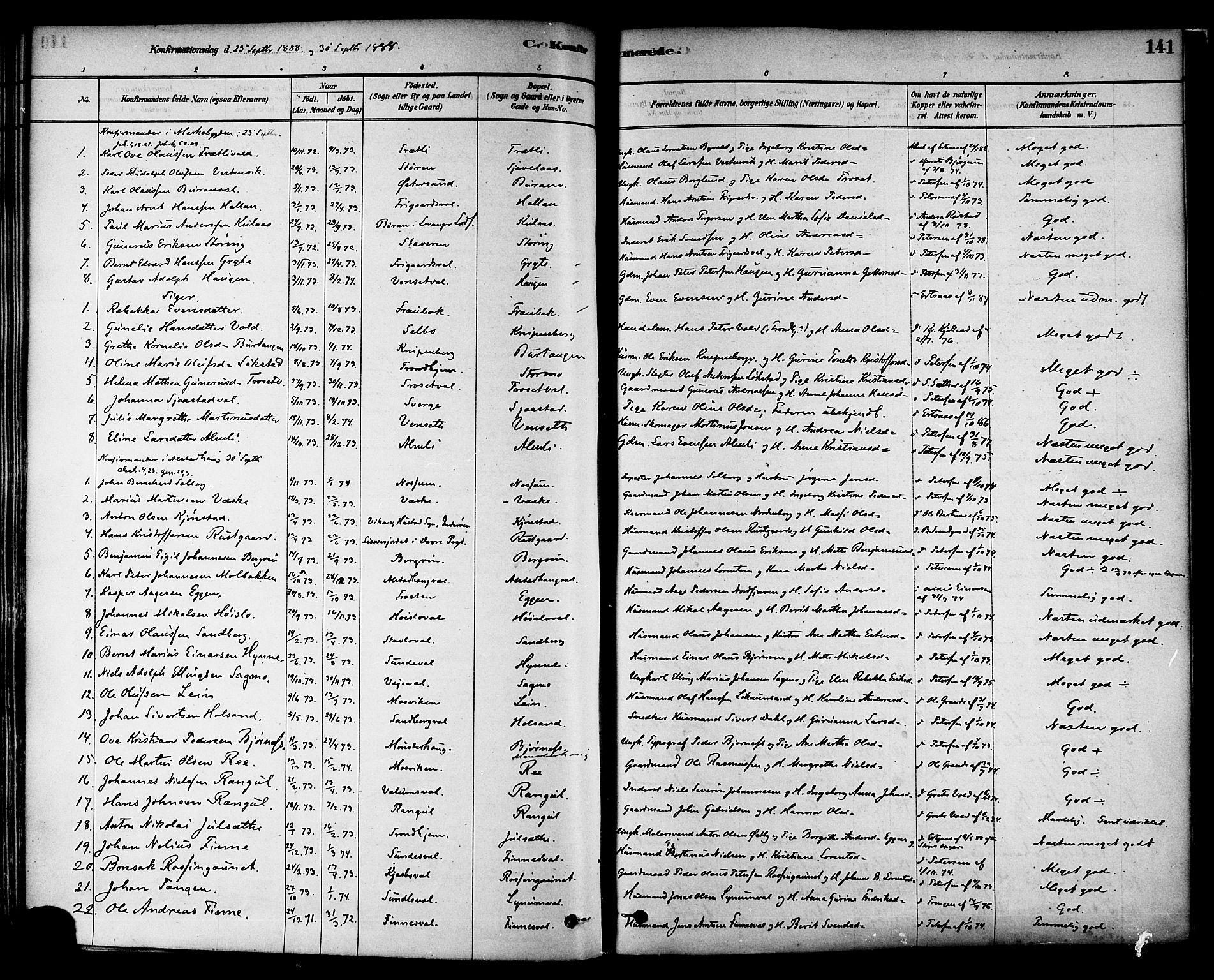 SAT, Ministerialprotokoller, klokkerbøker og fødselsregistre - Nord-Trøndelag, 717/L0159: Ministerialbok nr. 717A09, 1878-1898, s. 141
