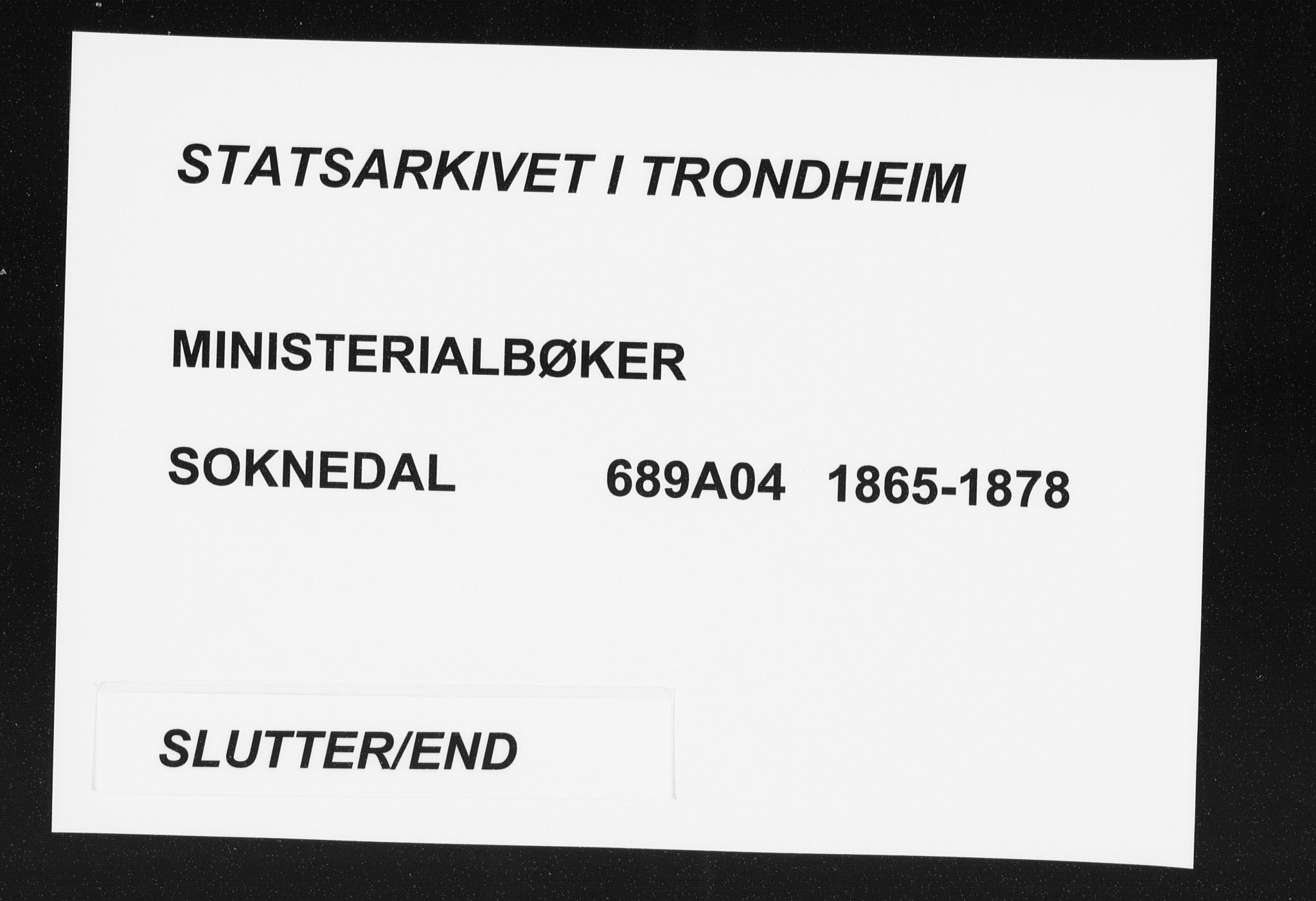 SAT, Ministerialprotokoller, klokkerbøker og fødselsregistre - Sør-Trøndelag, 689/L1039: Ministerialbok nr. 689A04, 1865-1878