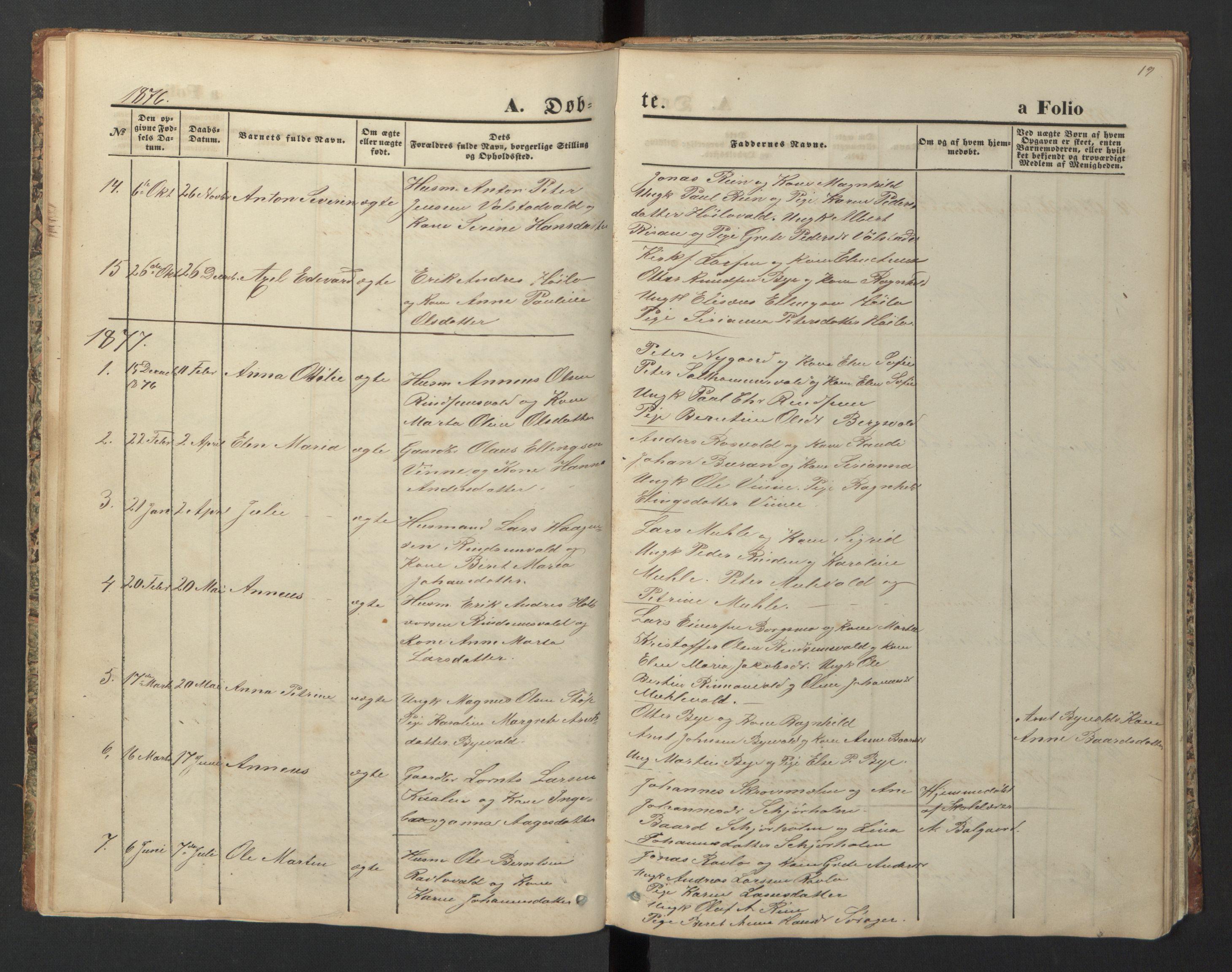 SAT, Ministerialprotokoller, klokkerbøker og fødselsregistre - Nord-Trøndelag, 726/L0271: Klokkerbok nr. 726C02, 1869-1897, s. 19