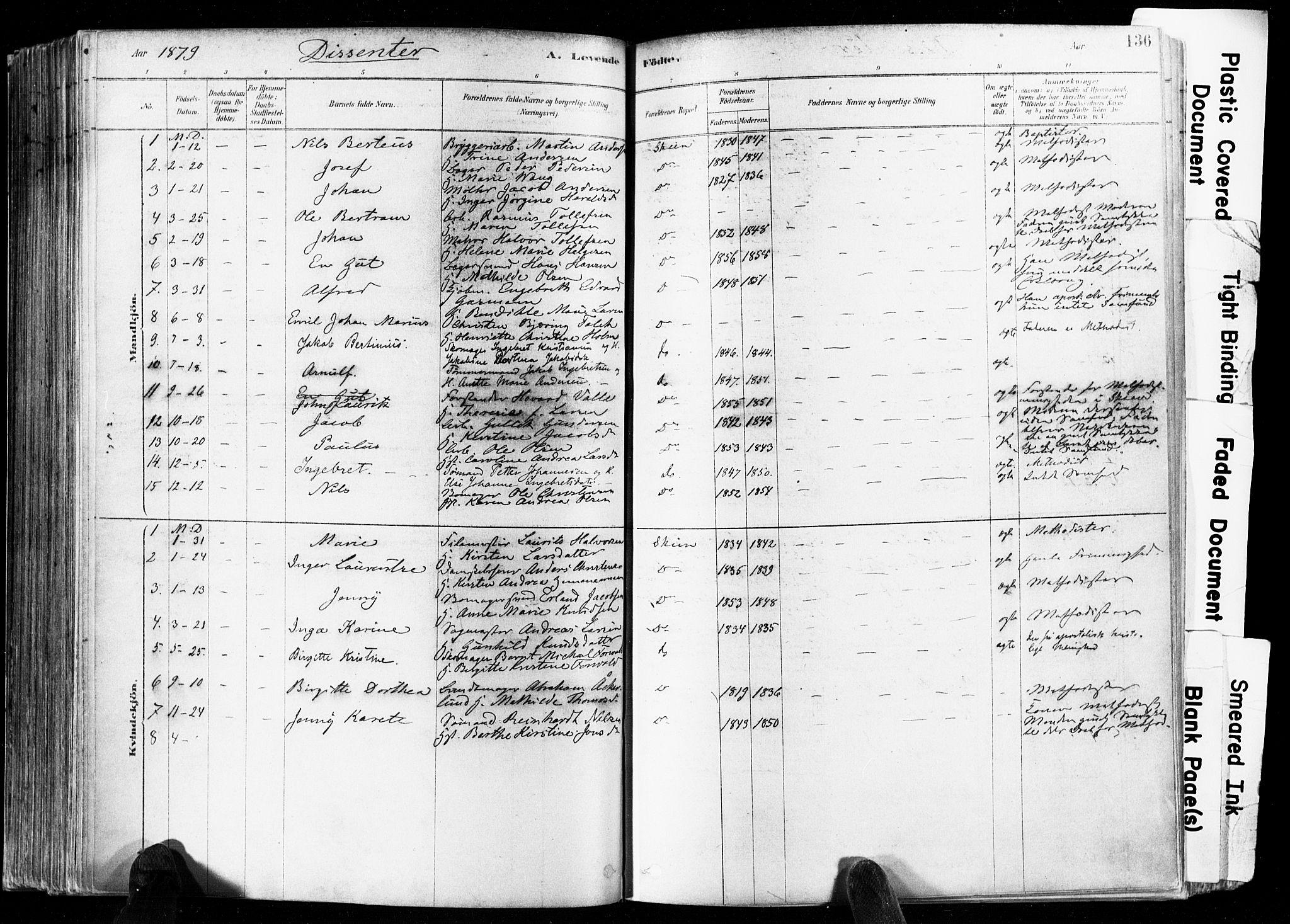 SAKO, Skien kirkebøker, F/Fa/L0009: Ministerialbok nr. 9, 1878-1890, s. 136