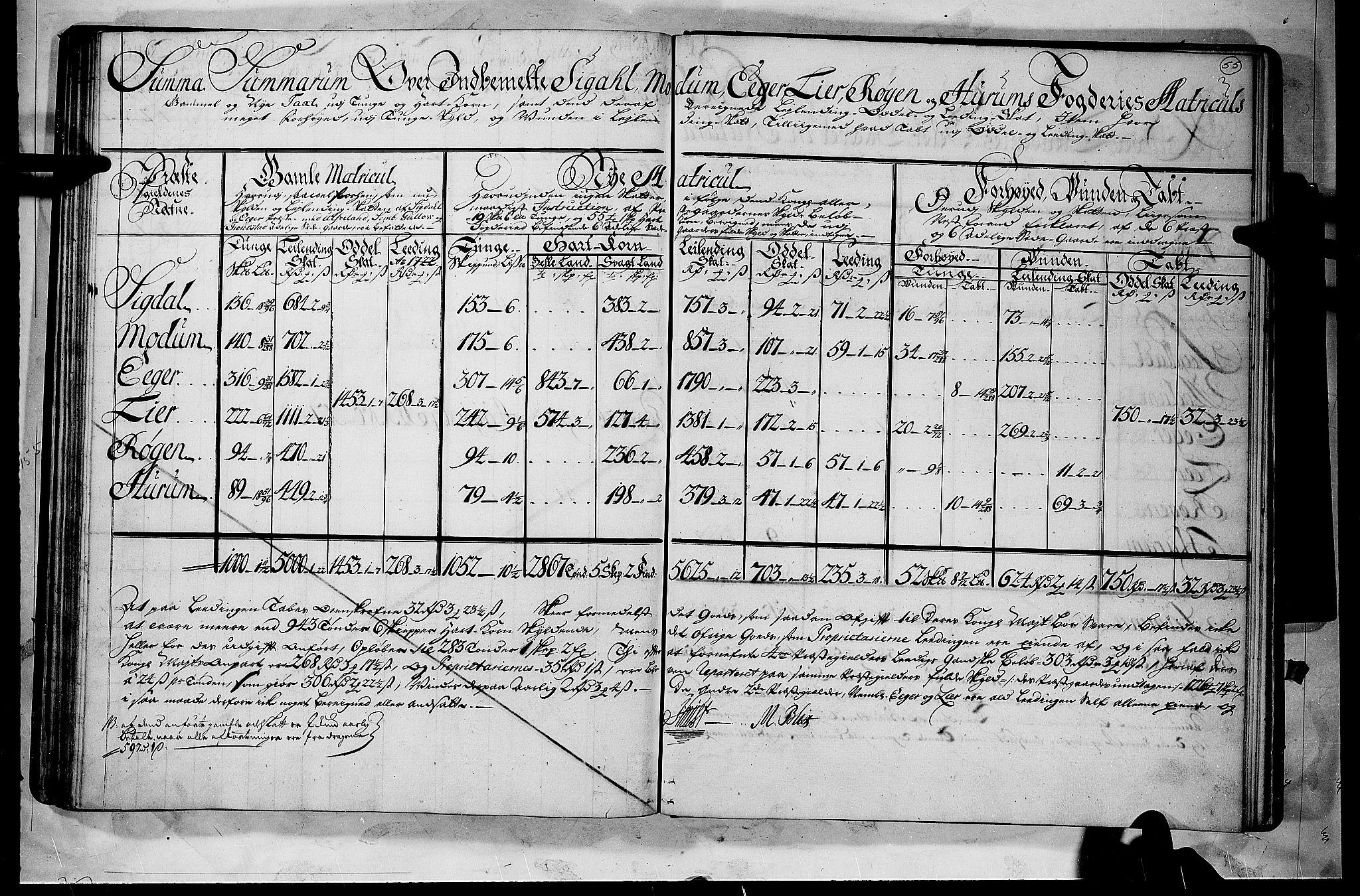 RA, Rentekammeret inntil 1814, Realistisk ordnet avdeling, N/Nb/Nbf/L0112: Buskerud matrikkelprotokoll, 1723, s. 54b-55a