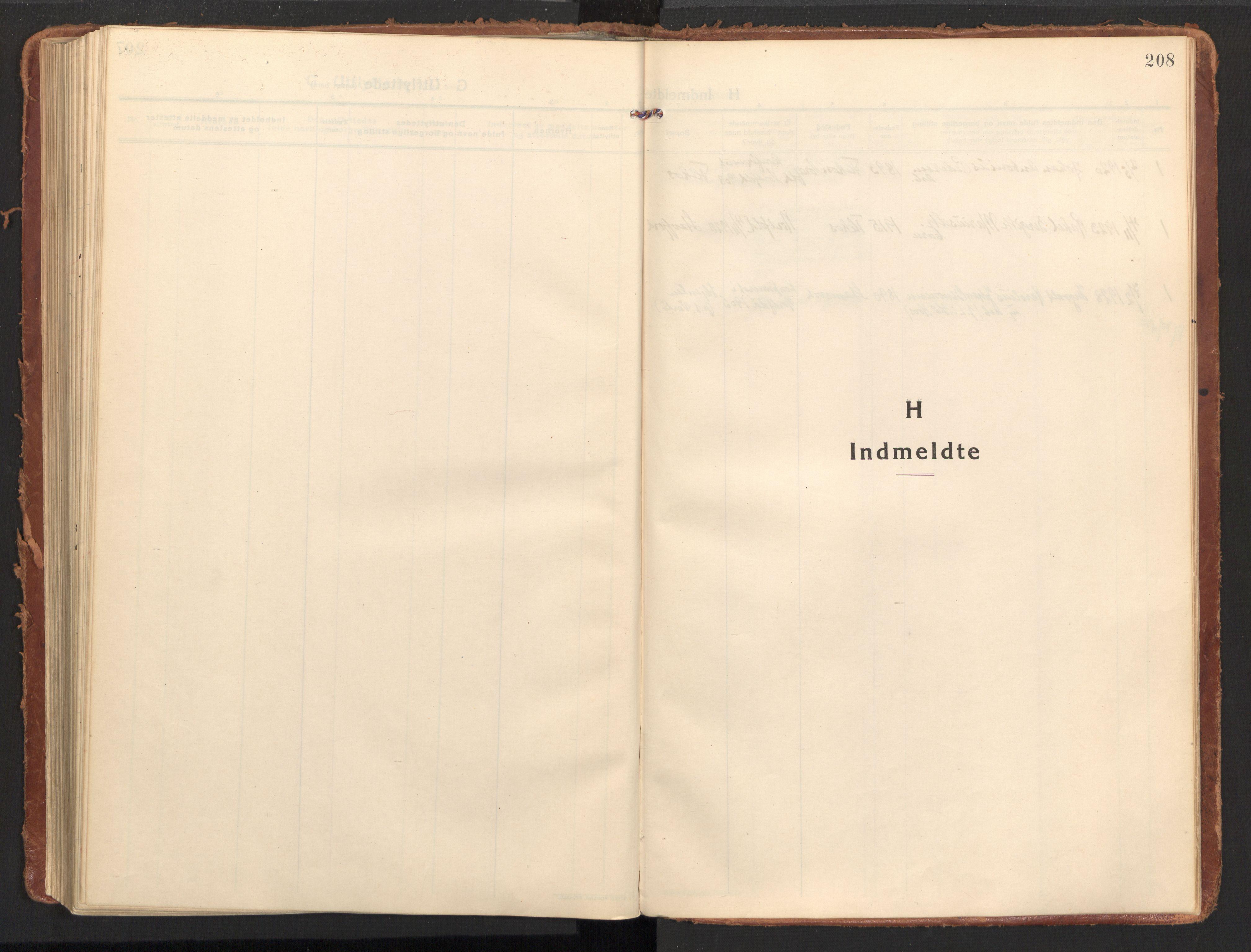 SAT, Ministerialprotokoller, klokkerbøker og fødselsregistre - Nordland, 858/L0833: Ministerialbok nr. 858A03, 1916-1934, s. 208