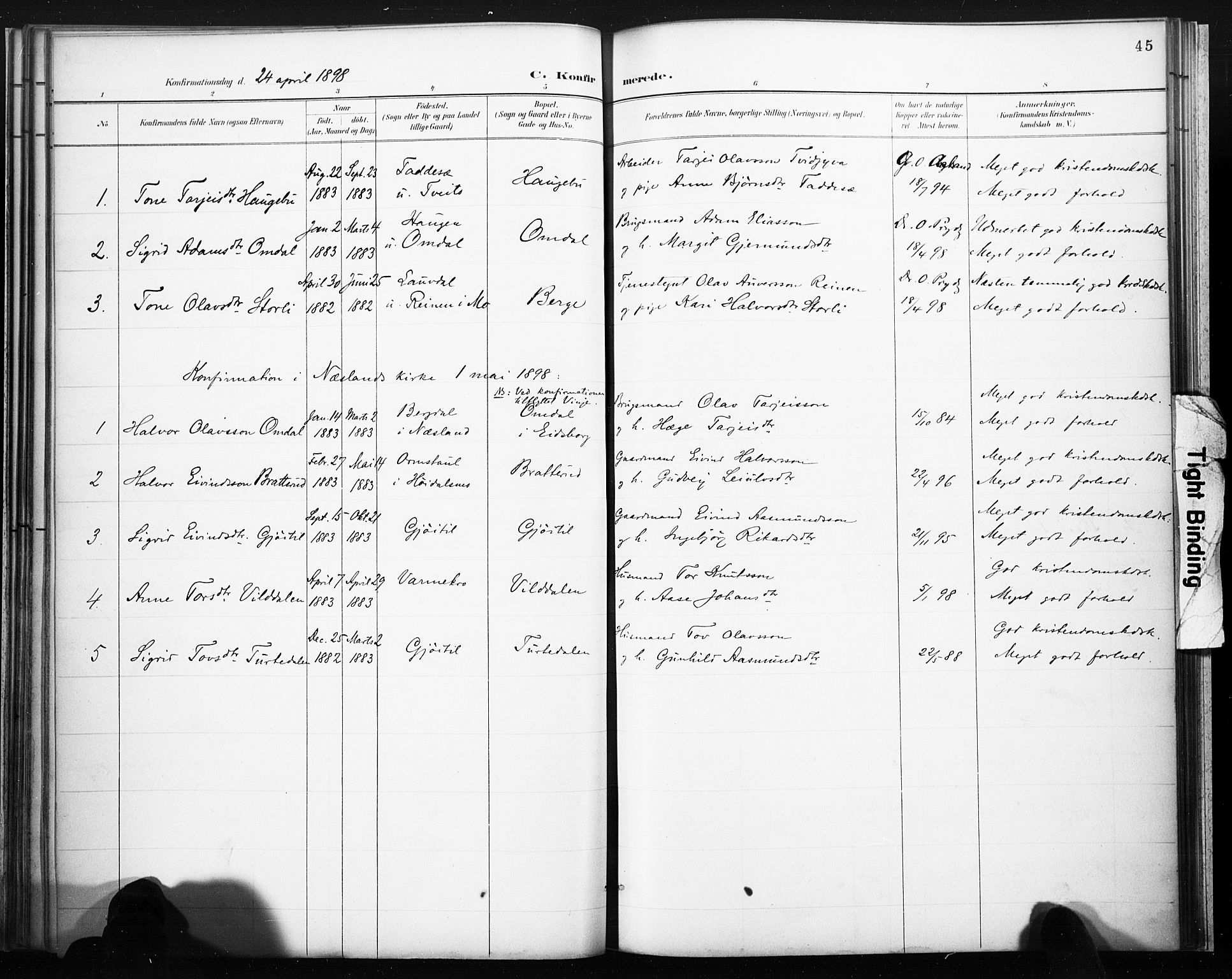 SAKO, Lårdal kirkebøker, F/Fb/L0002: Ministerialbok nr. II 2, 1887-1918, s. 45