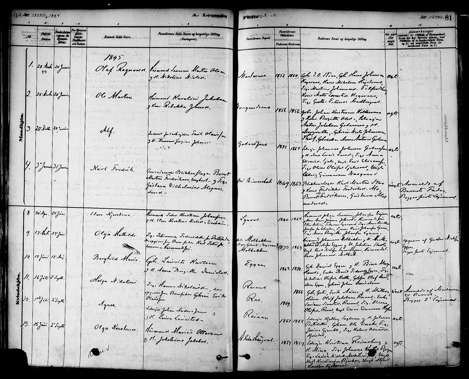 SAT, Ministerialprotokoller, klokkerbøker og fødselsregistre - Nord-Trøndelag, 717/L0159: Ministerialbok nr. 717A09, 1878-1898, s. 81