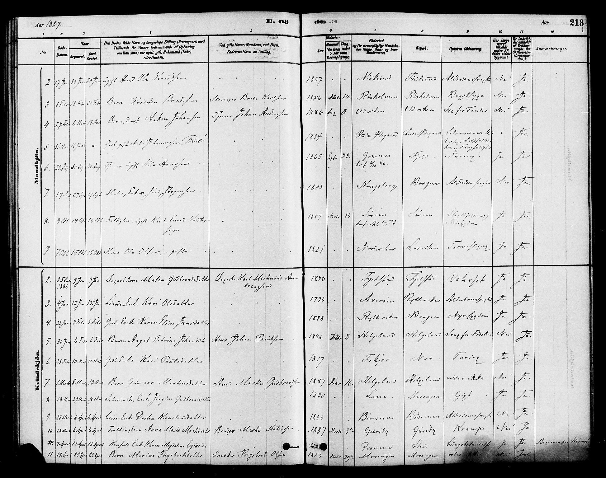SAKO, Hole kirkebøker, F/Fa/L0008: Ministerialbok nr. I 8, 1878-1891, s. 213