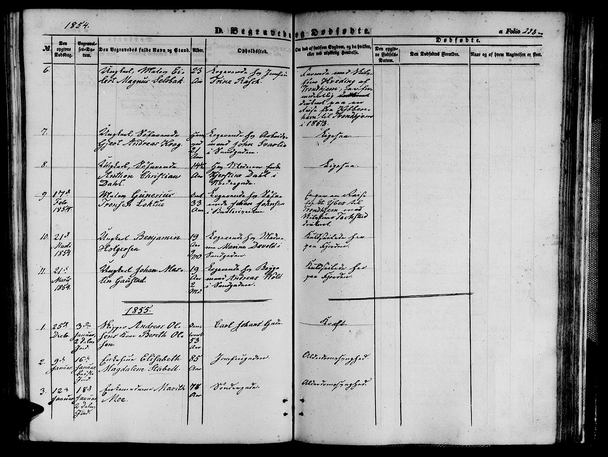 SAT, Ministerialprotokoller, klokkerbøker og fødselsregistre - Sør-Trøndelag, 602/L0138: Klokkerbok nr. 602C06, 1853-1858, s. 238
