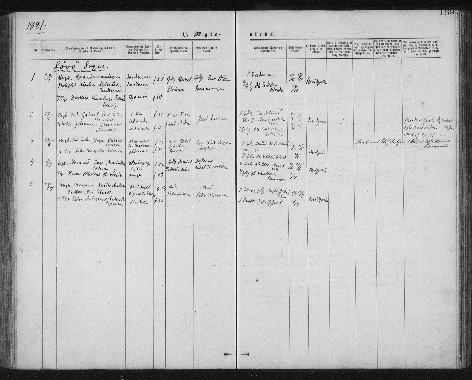 SAT, Ministerialprotokoller, klokkerbøker og fødselsregistre - Nord-Trøndelag, 771/L0596: Ministerialbok nr. 771A03, 1870-1884, s. 169