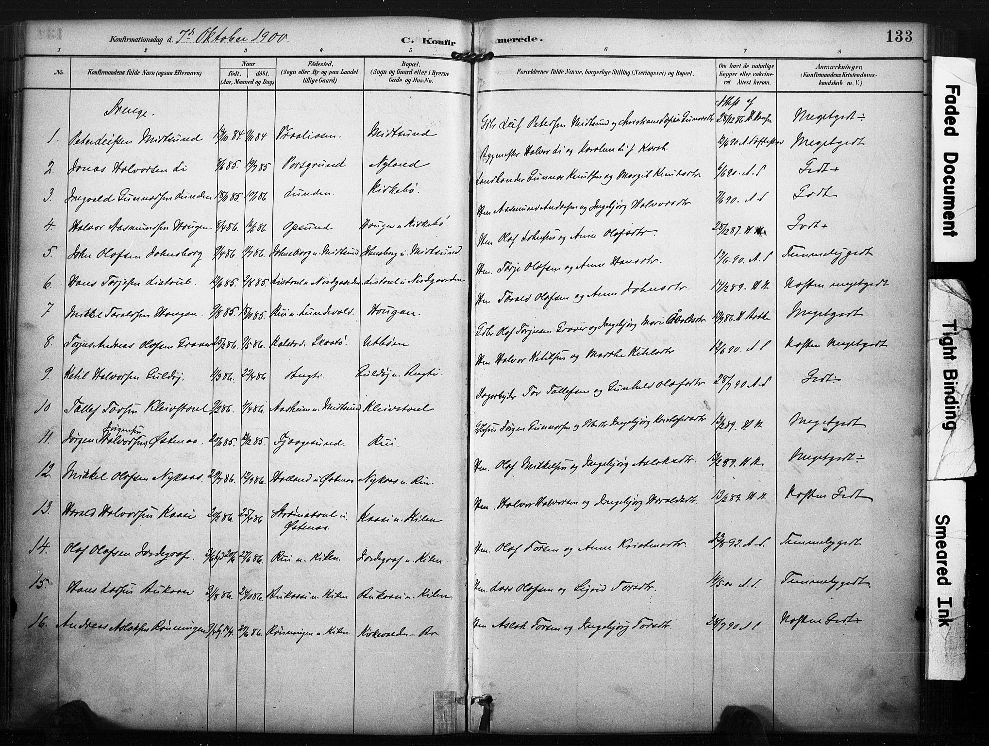 SAKO, Kviteseid kirkebøker, F/Fa/L0008: Ministerialbok nr. I 8, 1882-1903, s. 133