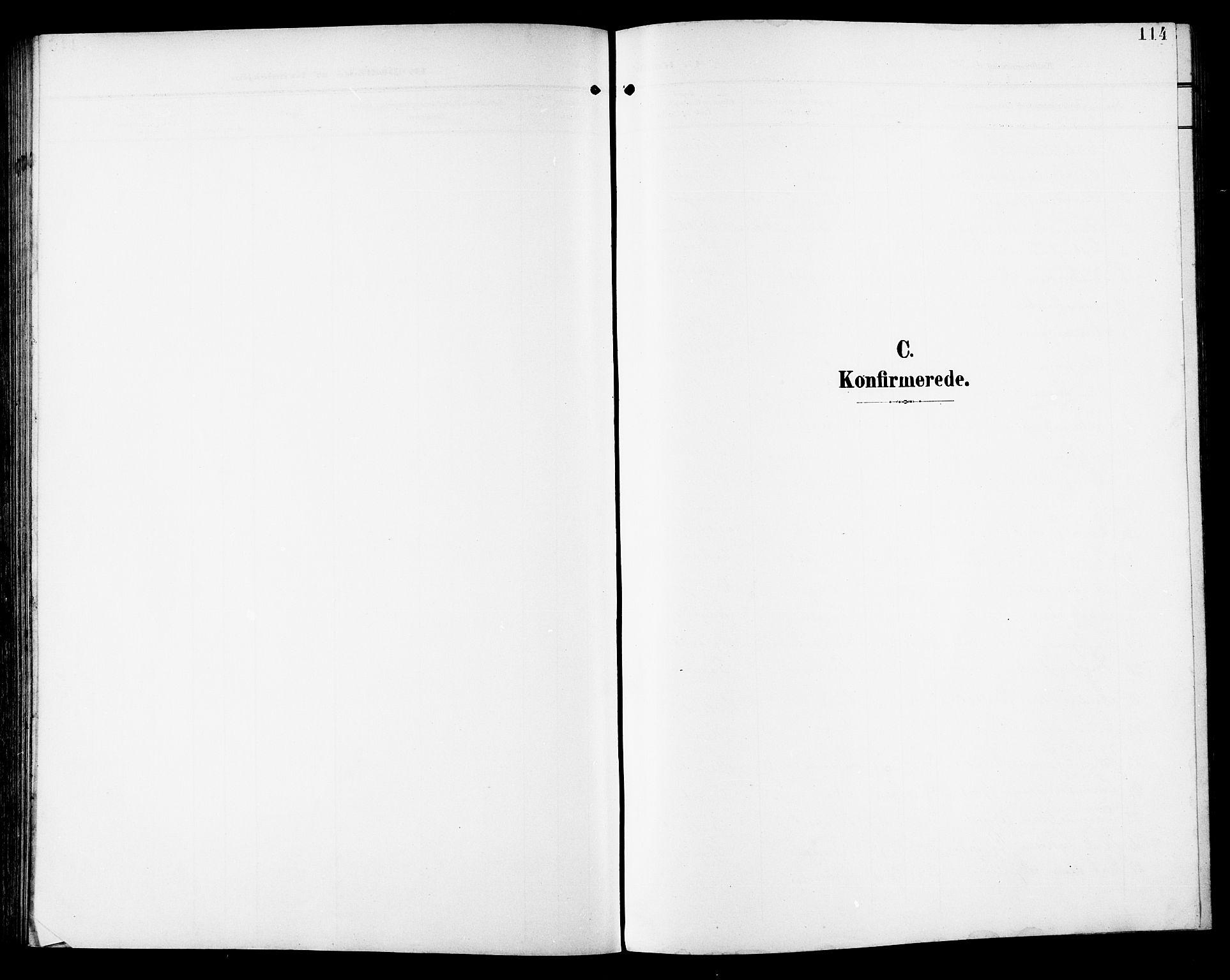 SAT, Ministerialprotokoller, klokkerbøker og fødselsregistre - Sør-Trøndelag, 672/L0864: Klokkerbok nr. 672C03, 1902-1914, s. 114