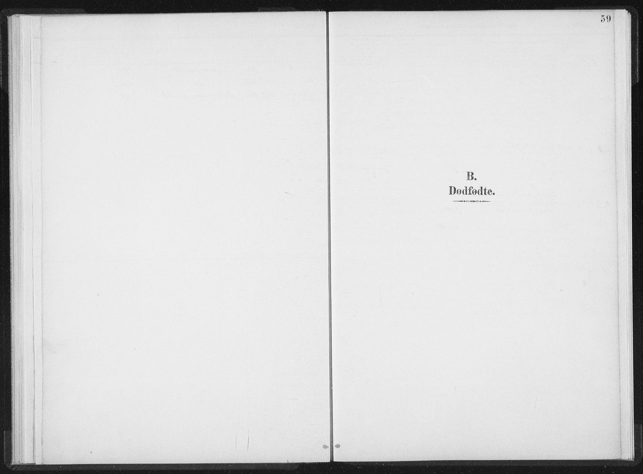SAT, Ministerialprotokoller, klokkerbøker og fødselsregistre - Nord-Trøndelag, 724/L0263: Ministerialbok nr. 724A01, 1891-1907, s. 59