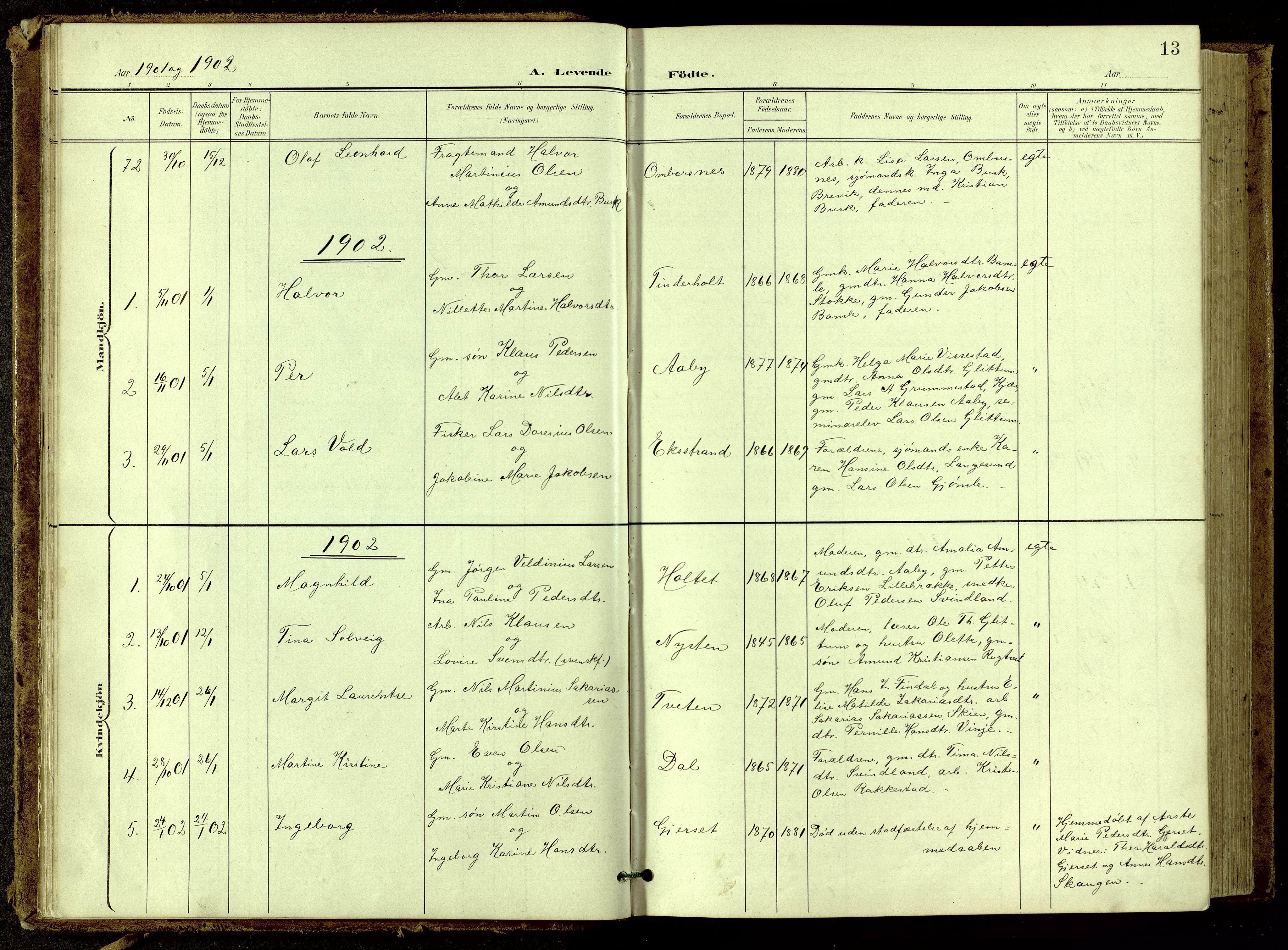 SAKO, Bamble kirkebøker, G/Ga/L0010: Klokkerbok nr. I 10, 1901-1919, s. 13