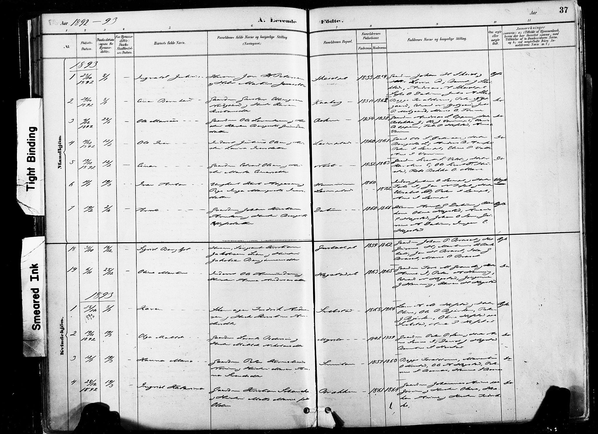 SAT, Ministerialprotokoller, klokkerbøker og fødselsregistre - Nord-Trøndelag, 735/L0351: Ministerialbok nr. 735A10, 1884-1908, s. 37