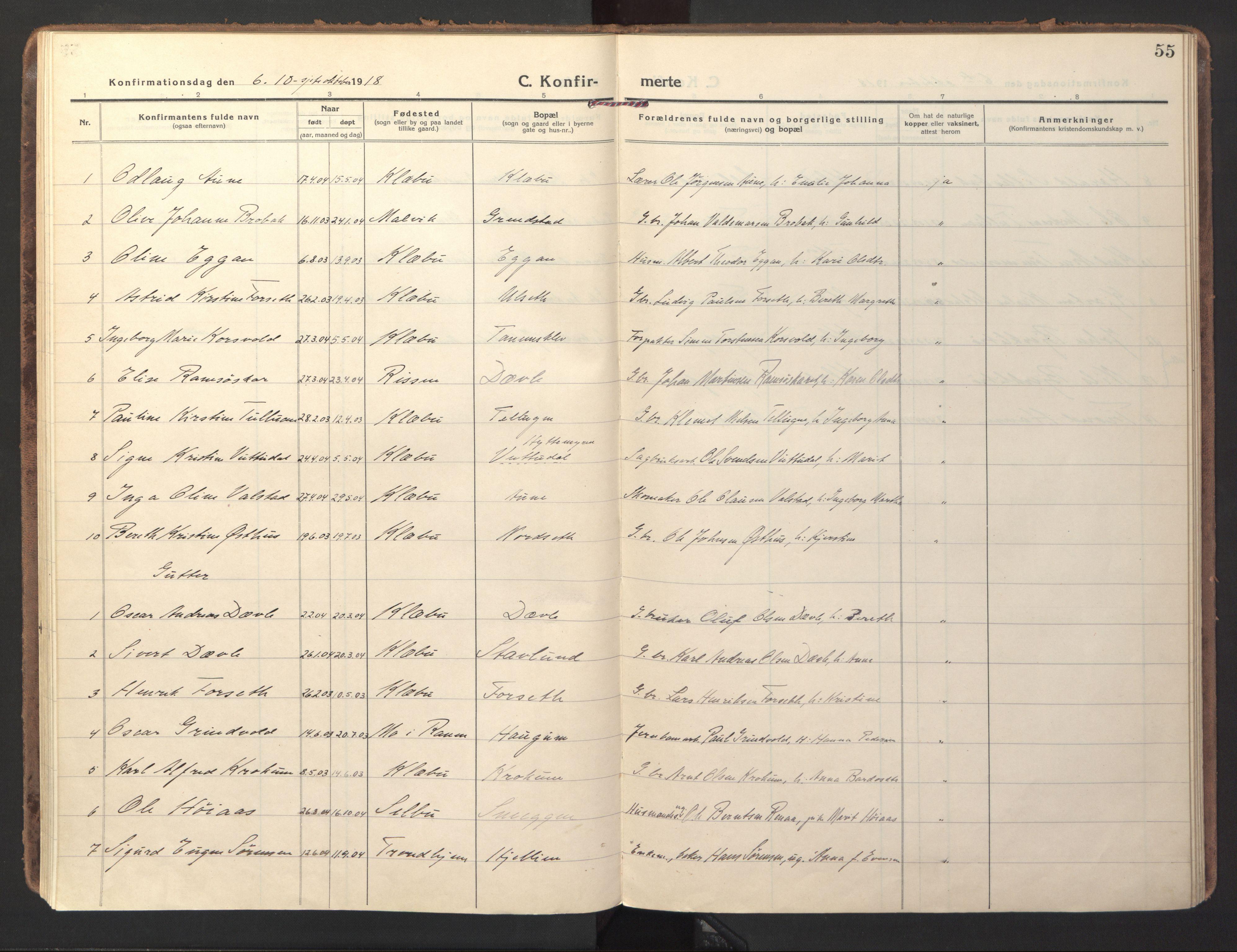 SAT, Ministerialprotokoller, klokkerbøker og fødselsregistre - Sør-Trøndelag, 618/L0449: Ministerialbok nr. 618A12, 1917-1924, s. 55