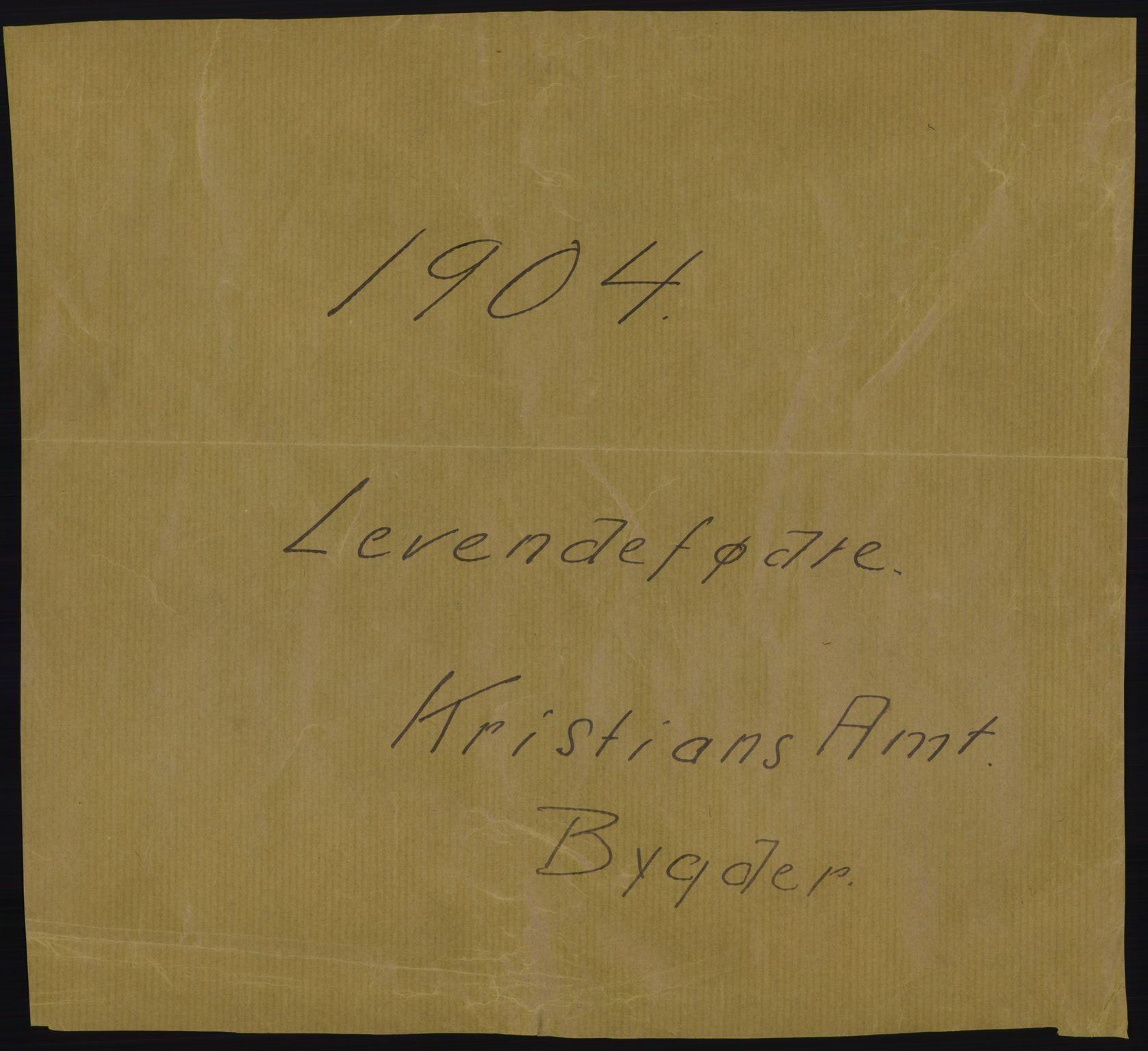RA, Statistisk sentralbyrå, Sosiodemografiske emner, Befolkning, D/Df/Dfa/Dfab/L0006: Kristians amt: Fødte, gifte, døde, 1904