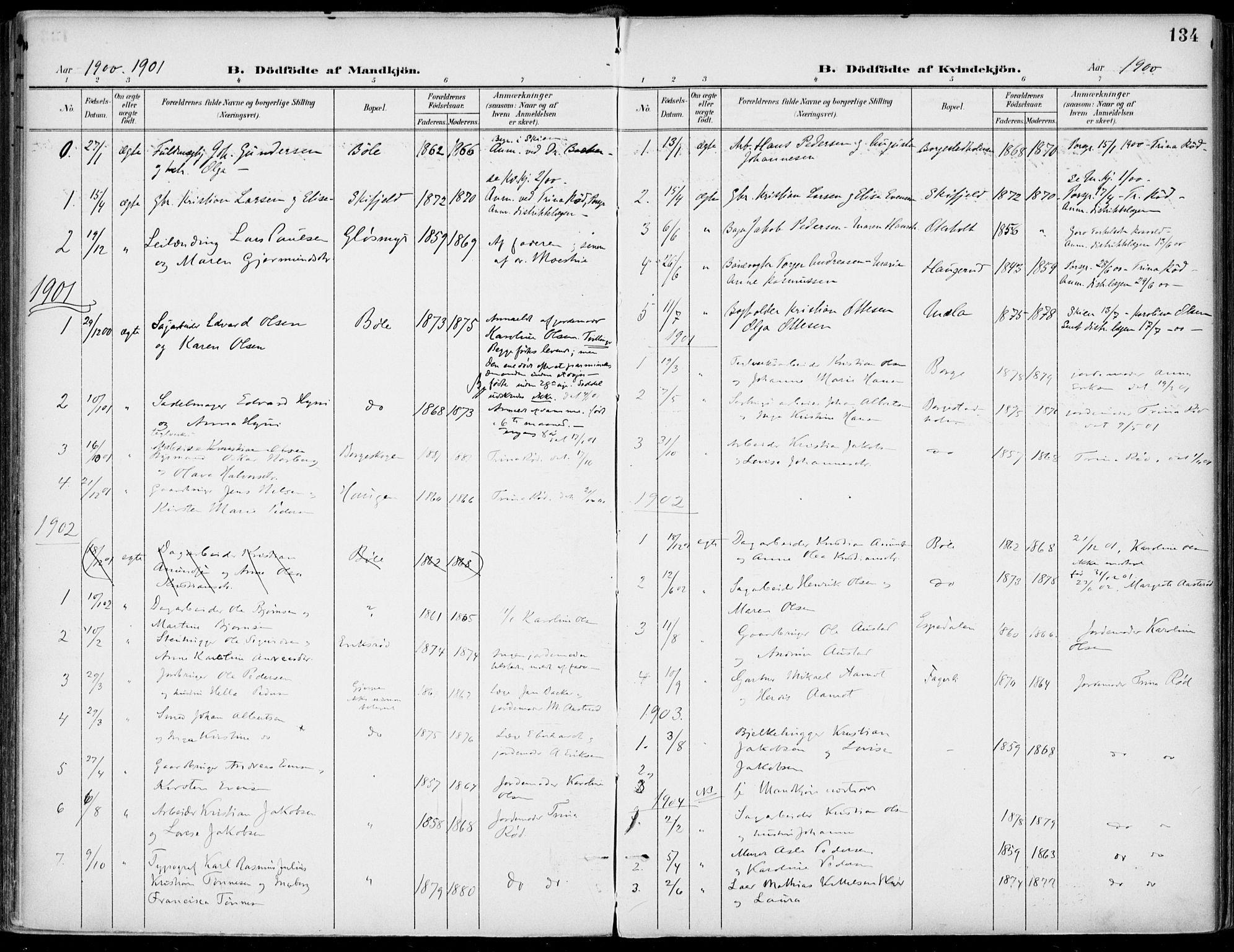 SAKO, Gjerpen kirkebøker, F/Fa/L0011: Ministerialbok nr. 11, 1896-1904, s. 134