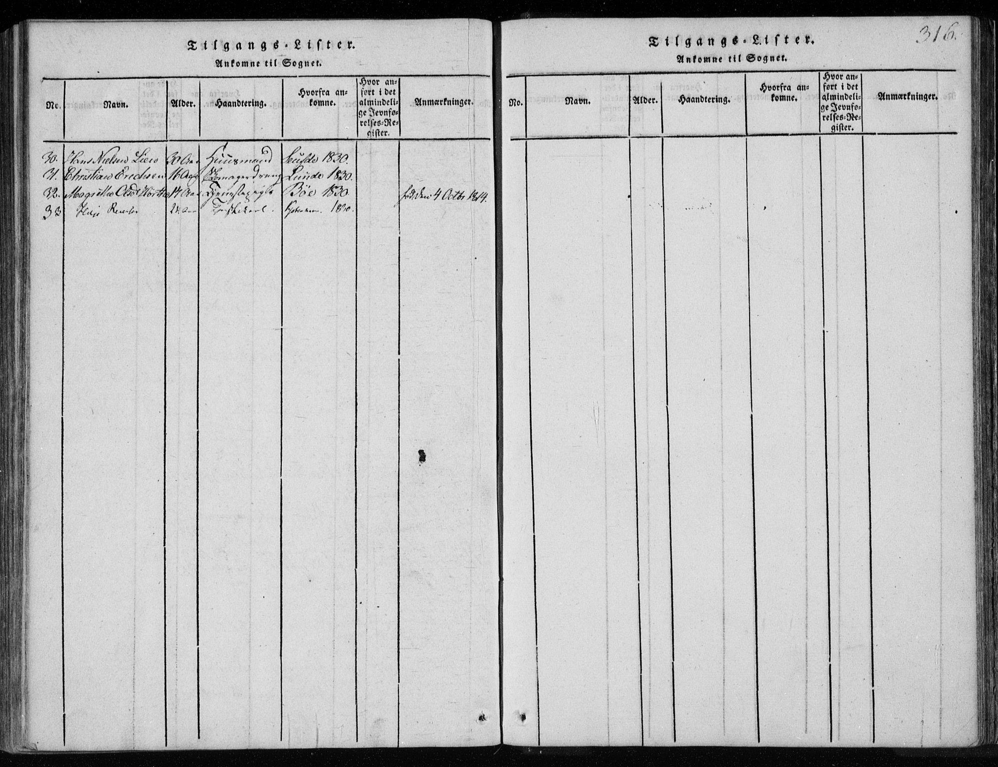 SAKO, Holla kirkebøker, F/Fa/L0003: Ministerialbok nr. 3, 1815-1830, s. 316