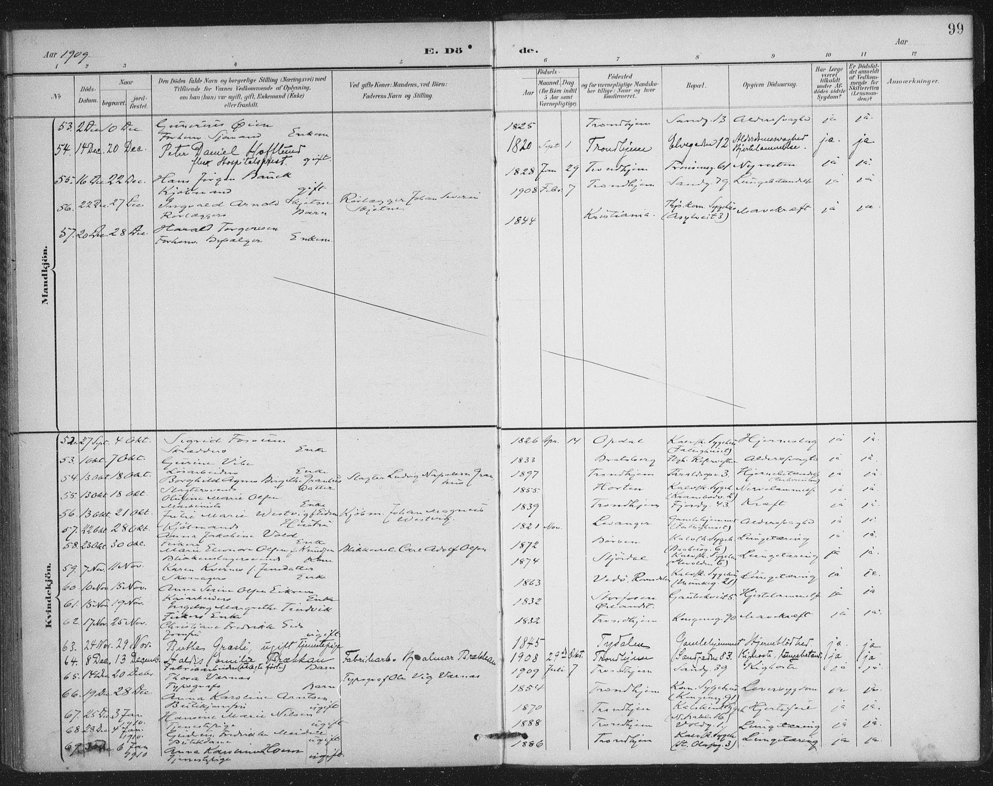 SAT, Ministerialprotokoller, klokkerbøker og fødselsregistre - Sør-Trøndelag, 602/L0123: Ministerialbok nr. 602A21, 1895-1910, s. 99