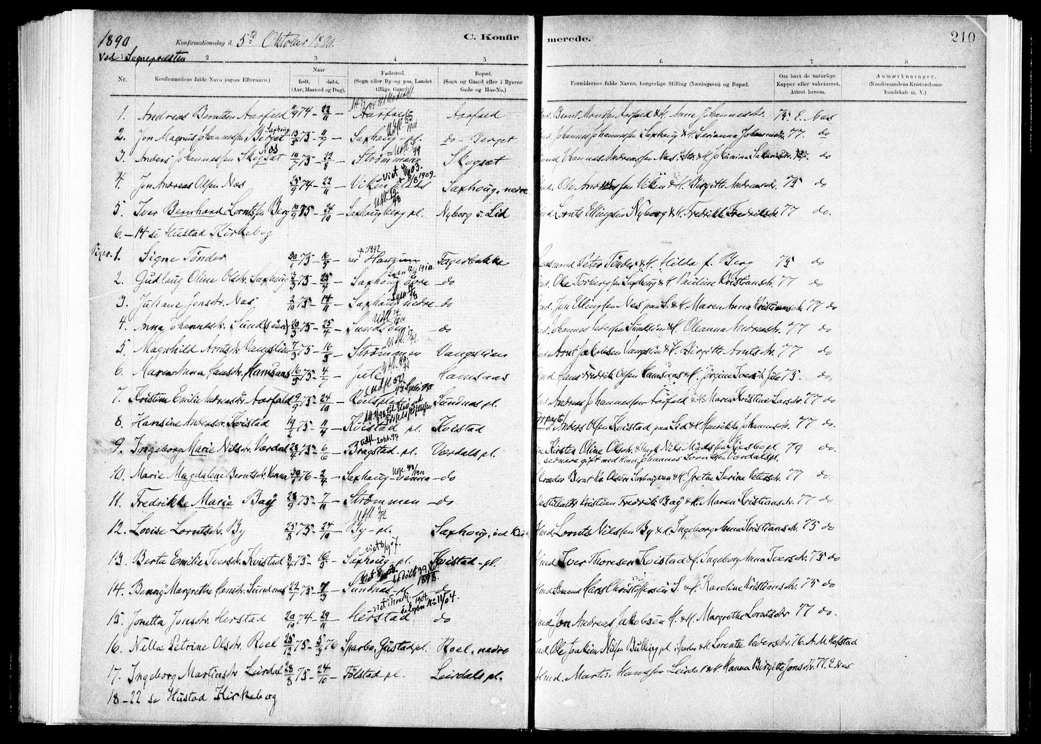 SAT, Ministerialprotokoller, klokkerbøker og fødselsregistre - Nord-Trøndelag, 730/L0285: Ministerialbok nr. 730A10, 1879-1914, s. 210