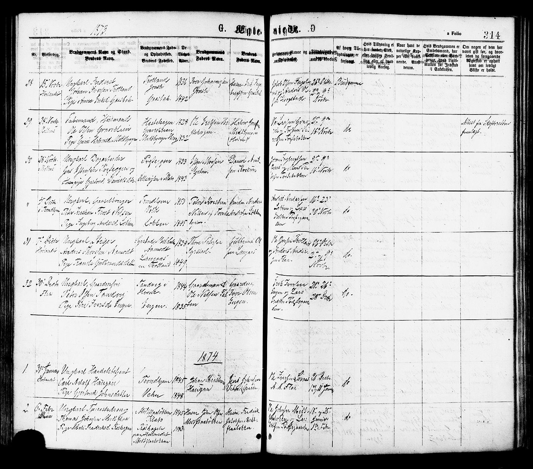 SAT, Ministerialprotokoller, klokkerbøker og fødselsregistre - Sør-Trøndelag, 691/L1079: Ministerialbok nr. 691A11, 1873-1886, s. 314
