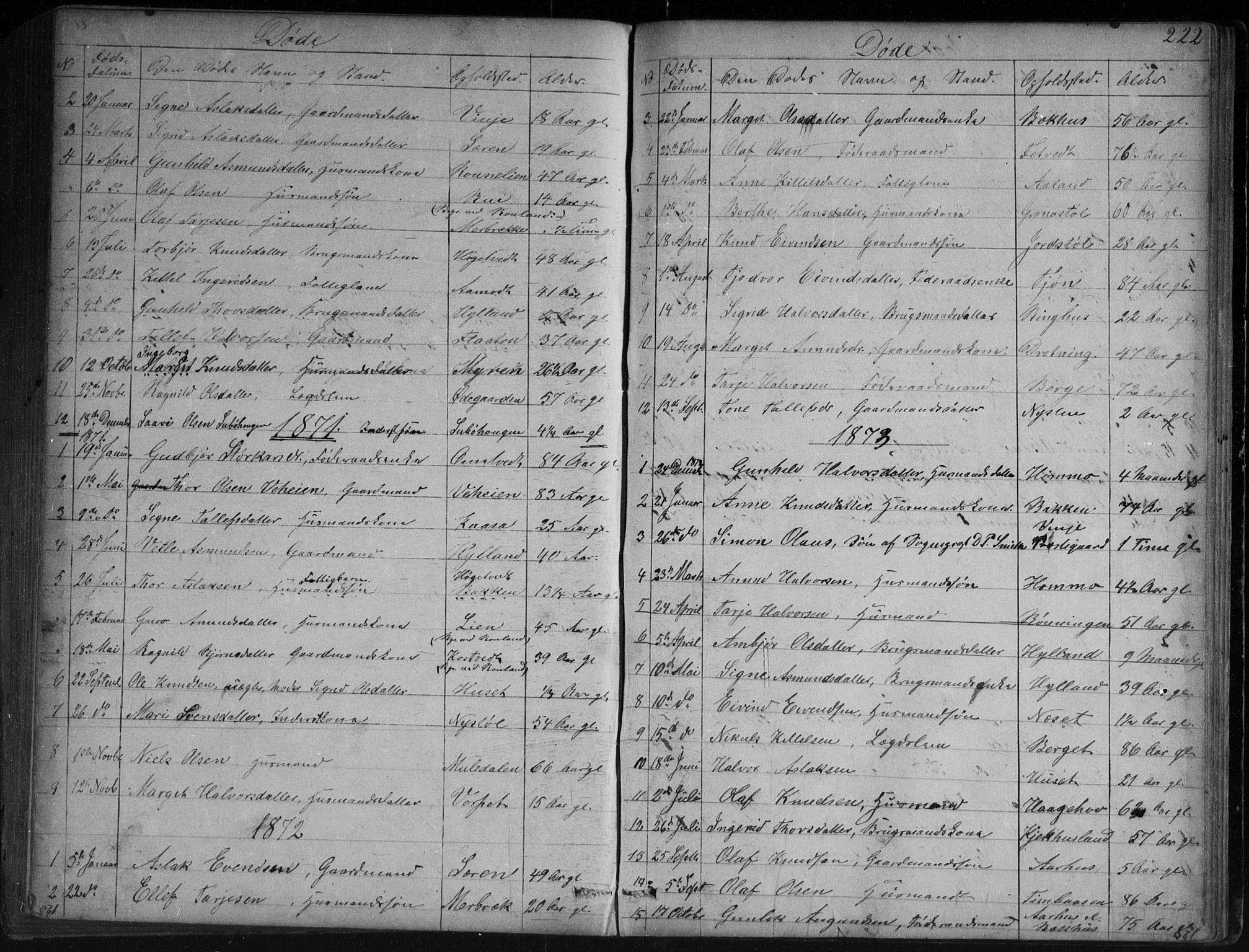 SAKO, Vinje kirkebøker, G/Ga/L0002: Klokkerbok nr. I 2, 1849-1893, s. 222